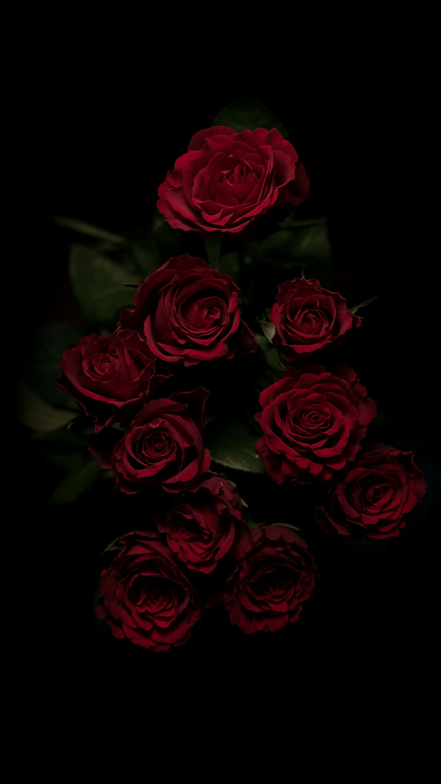 Red Rose Aesthetic Wallpapers - Wallpaper Cave