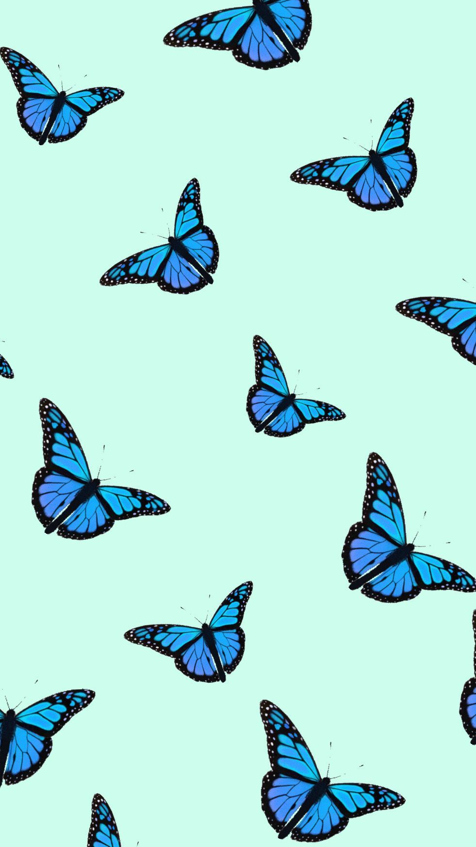 Aesthetic Butterflies Wallpapers - Wallpaper Cave