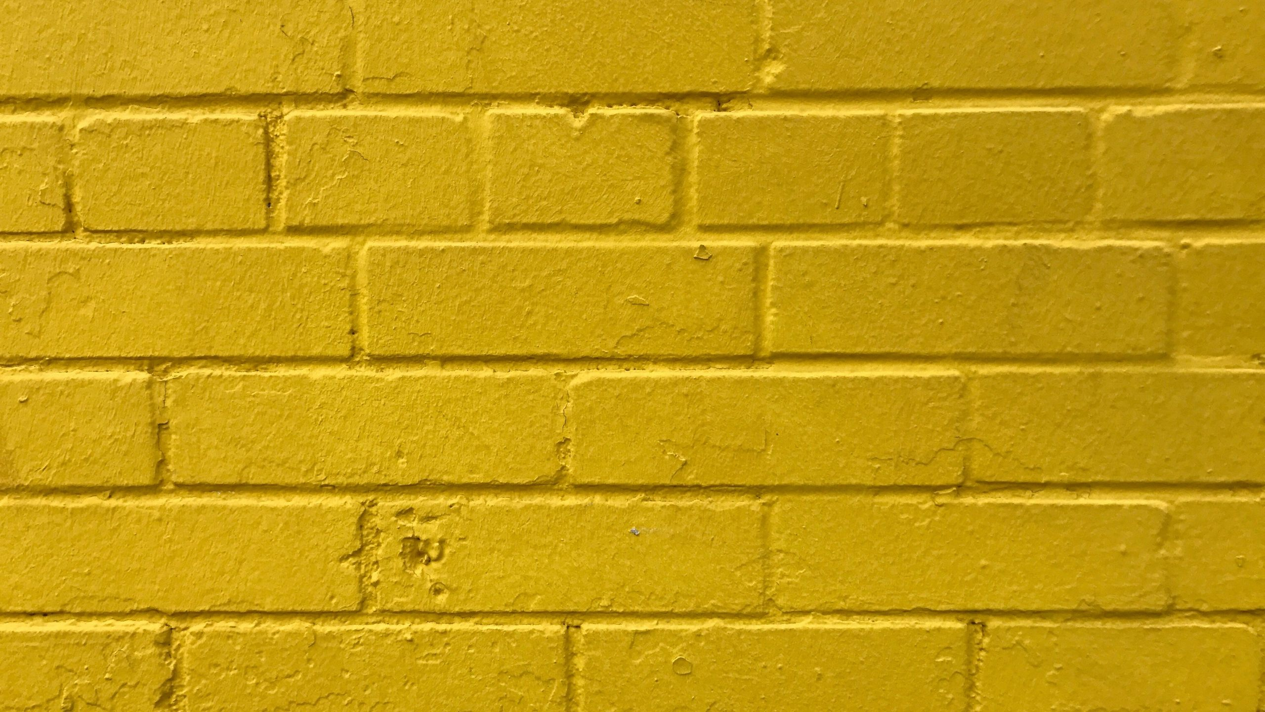 2560x1440 Yellow Wallpapers - Wallpaper Cave