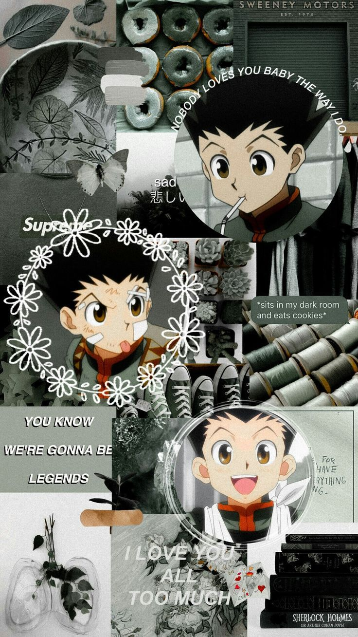 Aesthetic Anime Hunter X Hunter Wallpapers Wallpaper Cave
