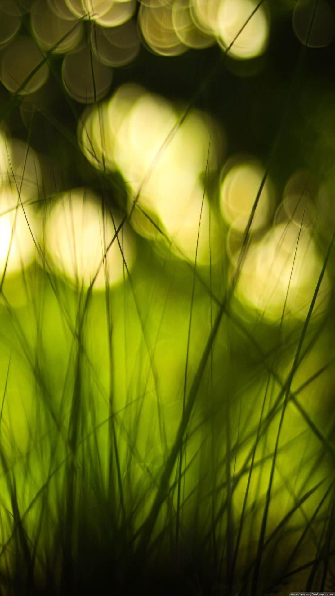 Android Full HD Blur Nature Wallpapers - Wallpaper Cave