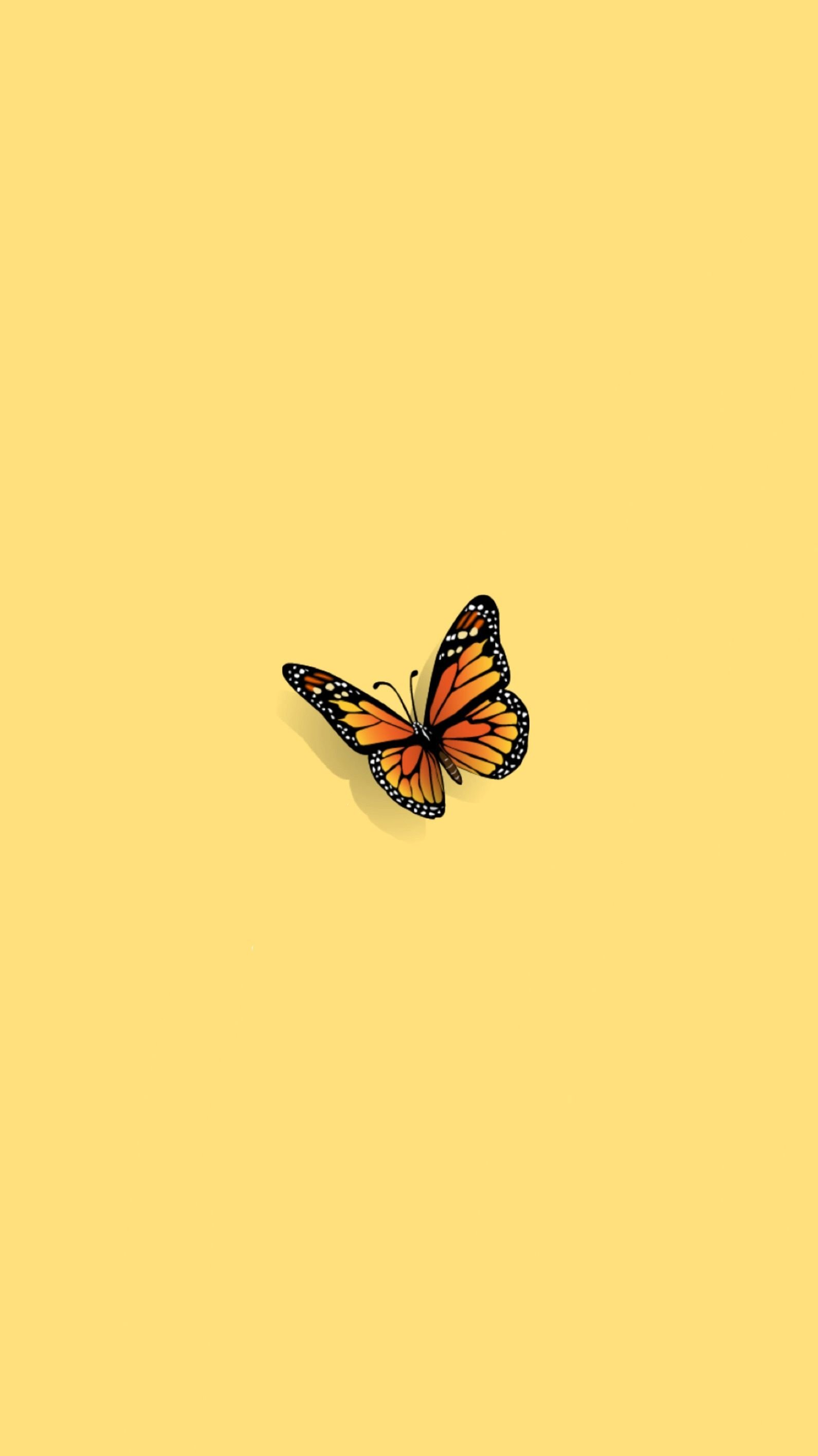 Butterfly Aesthetics Wallpapers - Wallpaper Cave