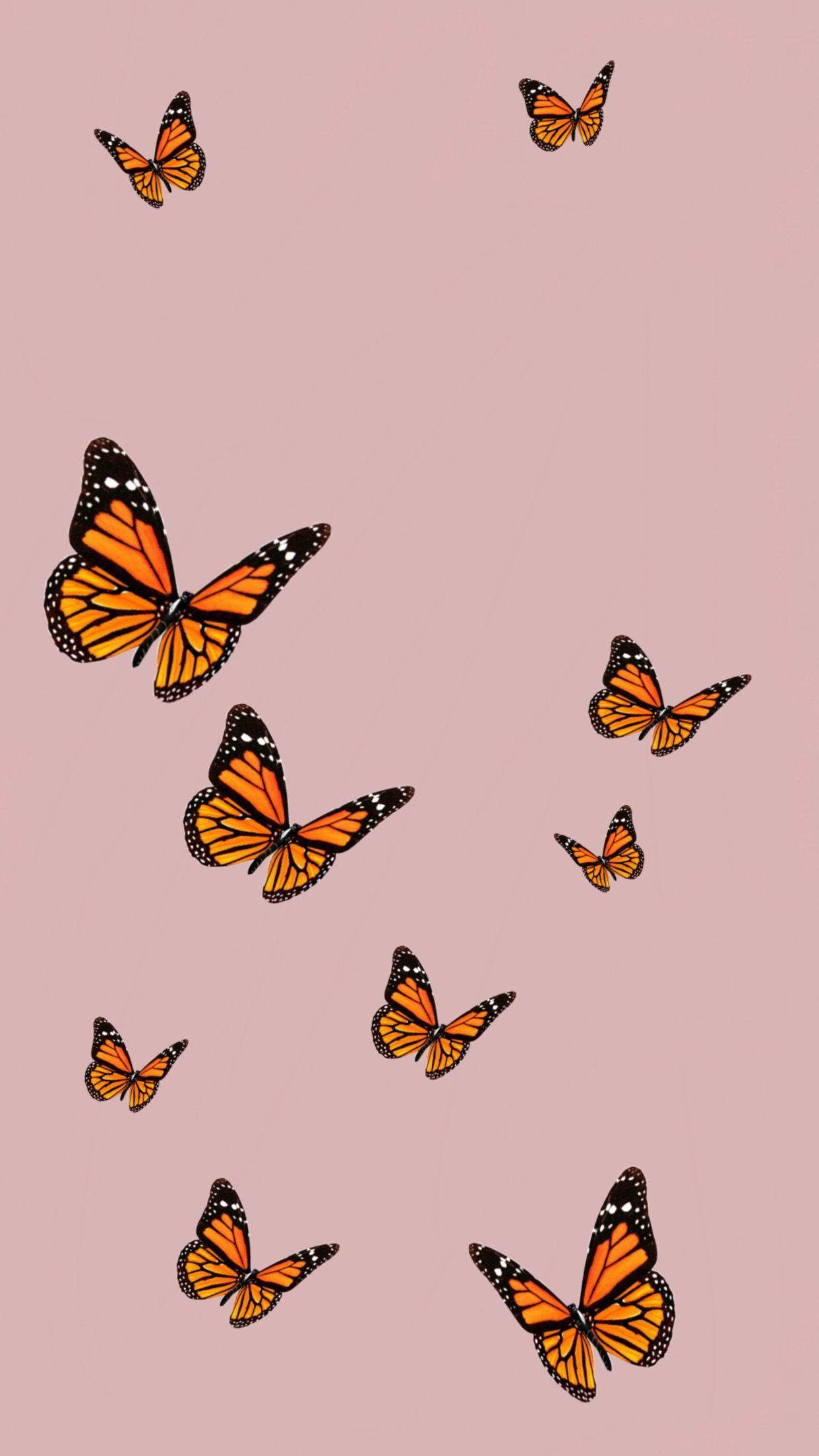 Aesthetic Simple Butterfly Wallpapers - Wallpaper Cave