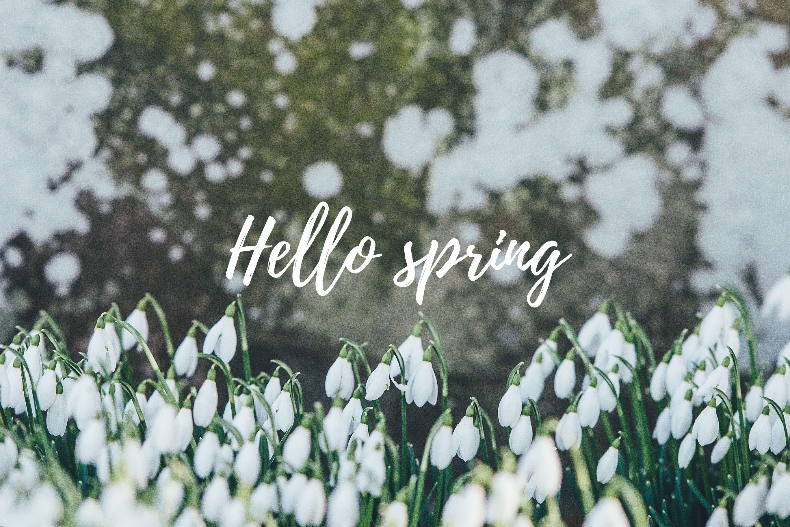 Desktop Aesthetic Spring Wallpapers - Wallpaper Cave