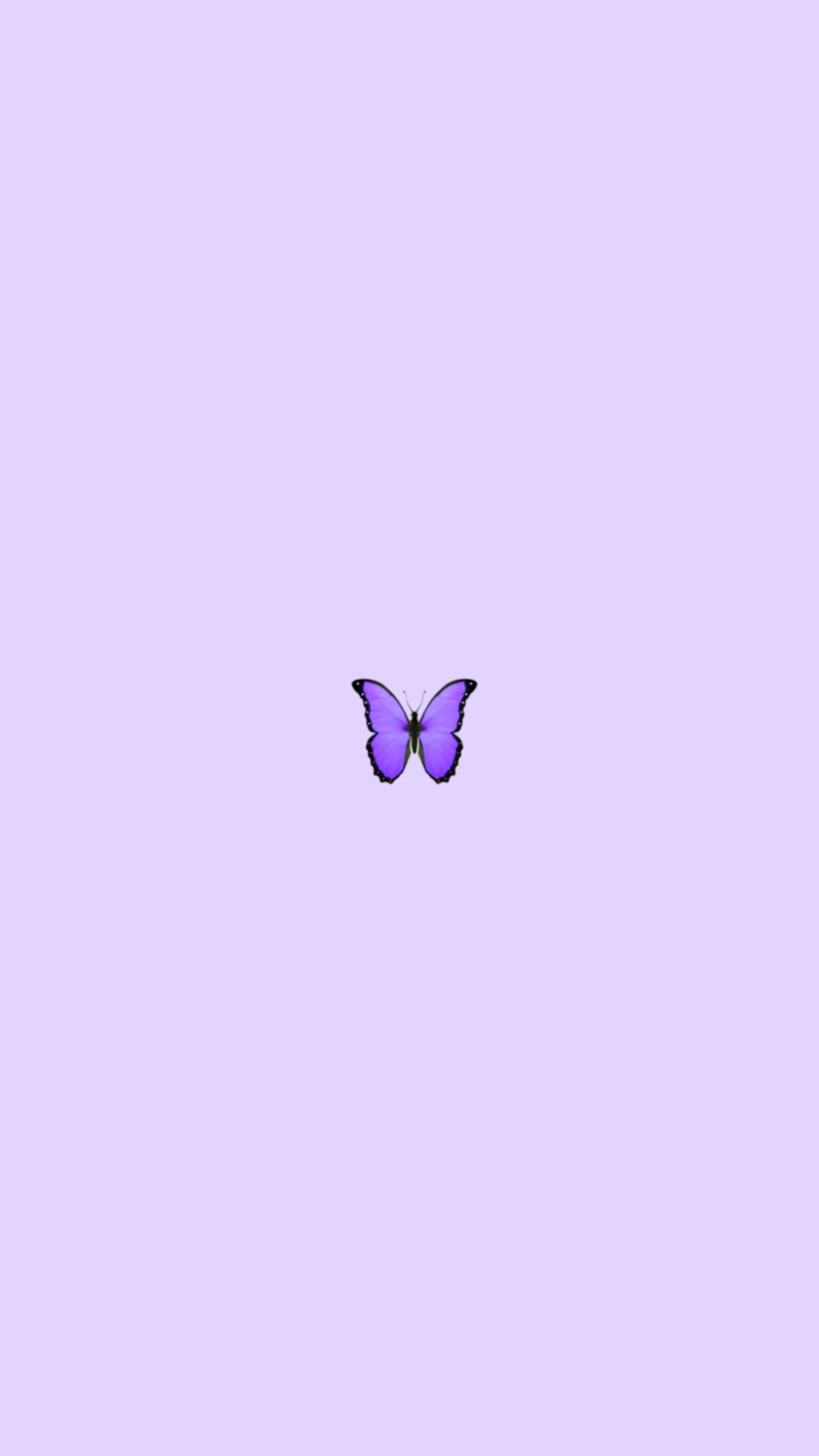Aesthetic Purple Butterfly Wallpapers Wallpaper Cave