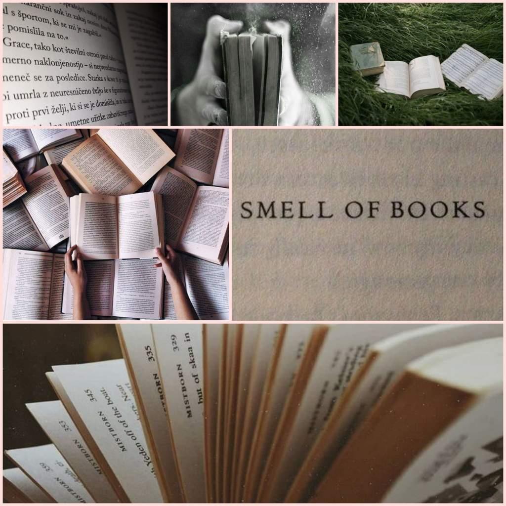 Book Aesthetic Wallpapers - Wallpaper Cave