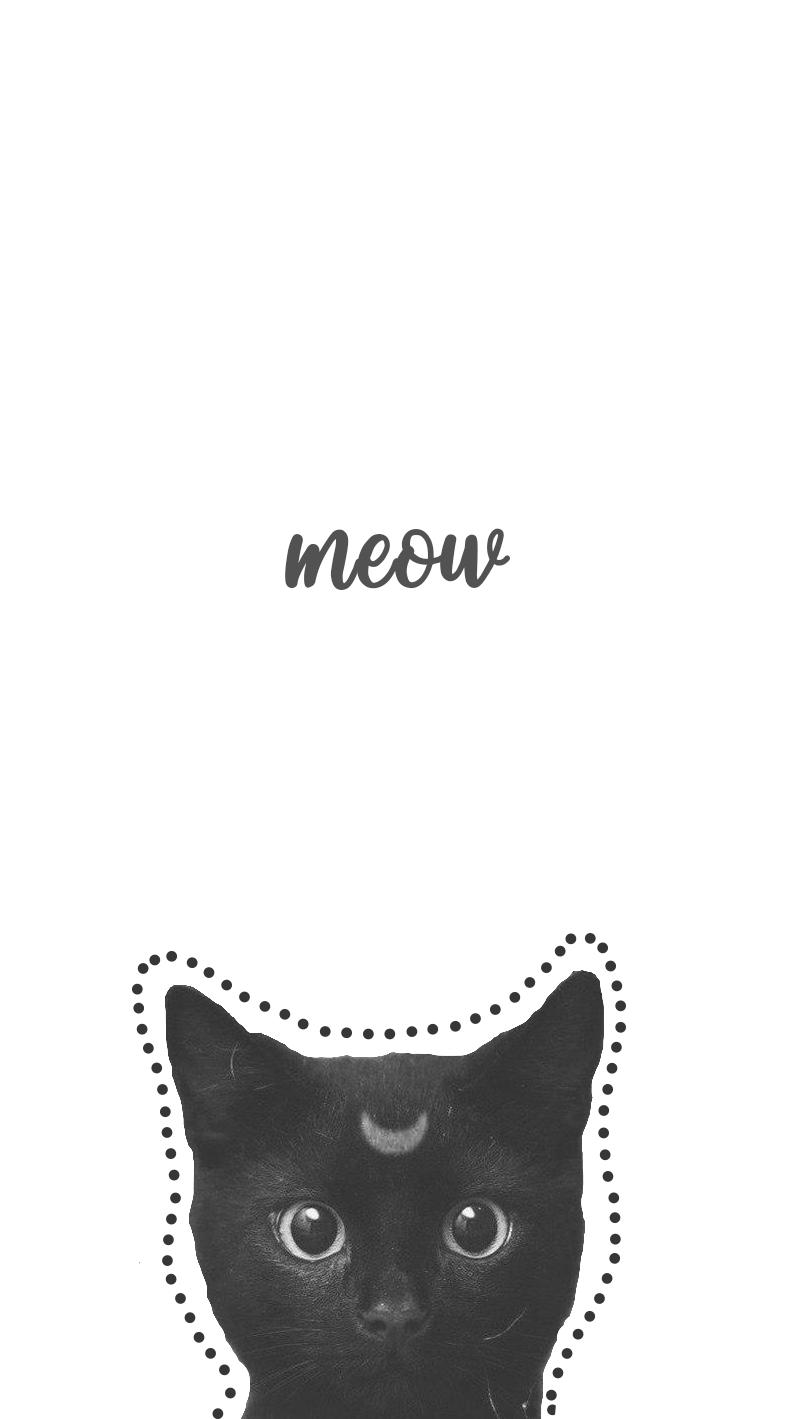 Cats Tumblr Wallpapers - Wallpaper Cave