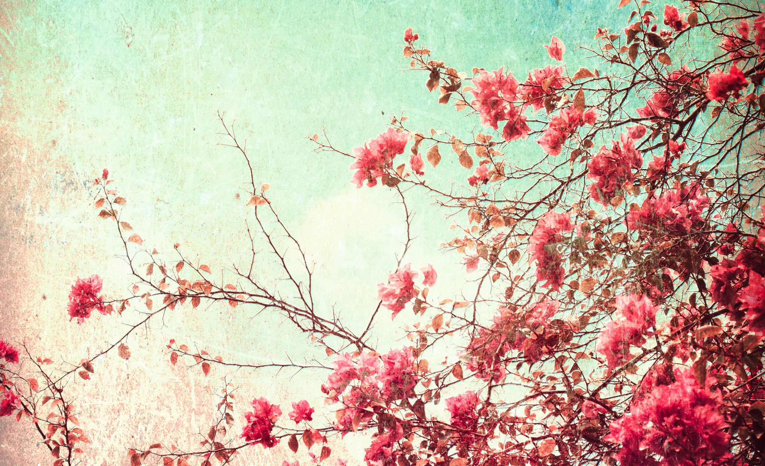 Vintage Wallpaper Spring Time per meter