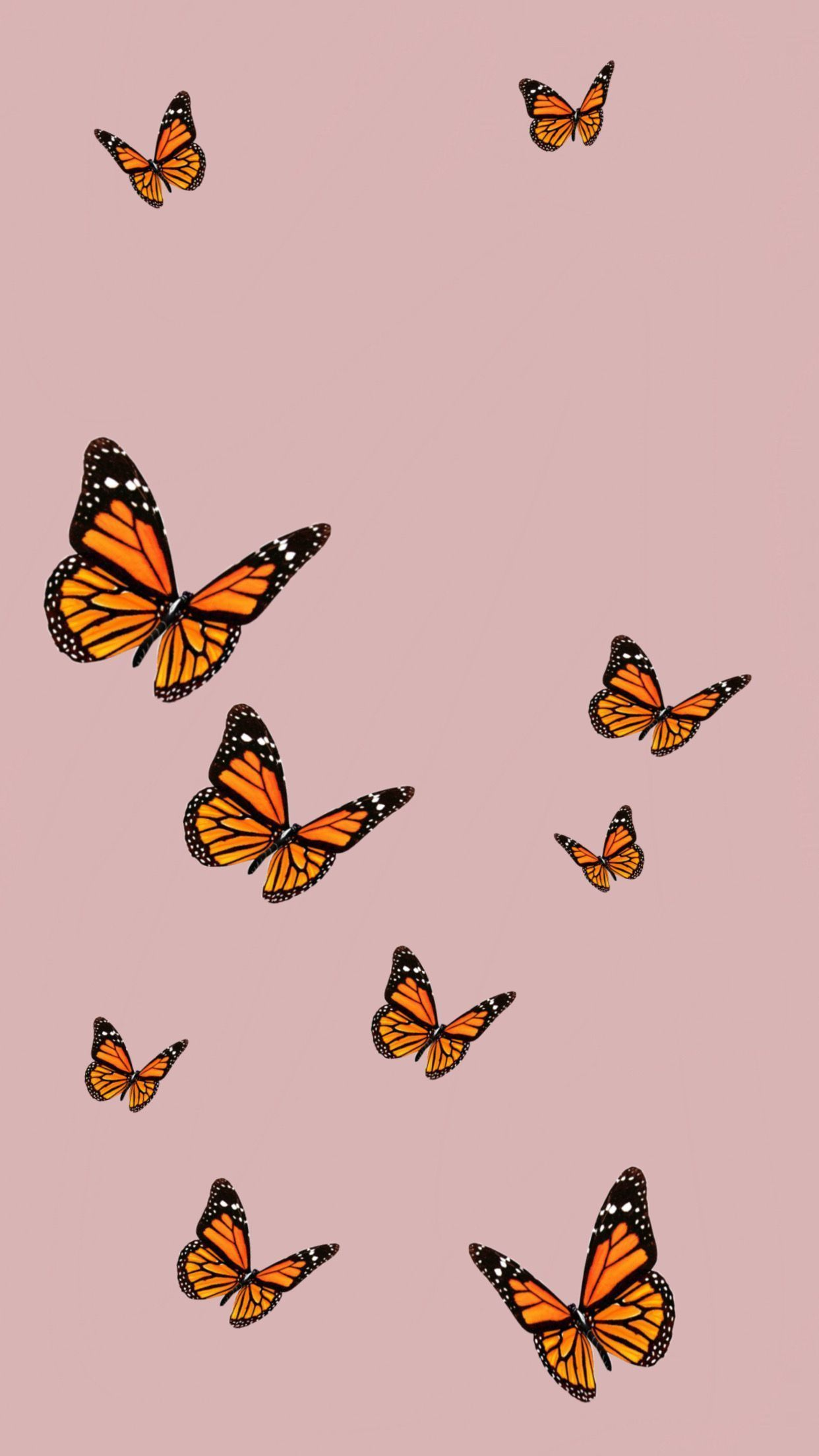 Cute Aesthetic Pink Butterfly Wallpapers - Wallpaper Cave