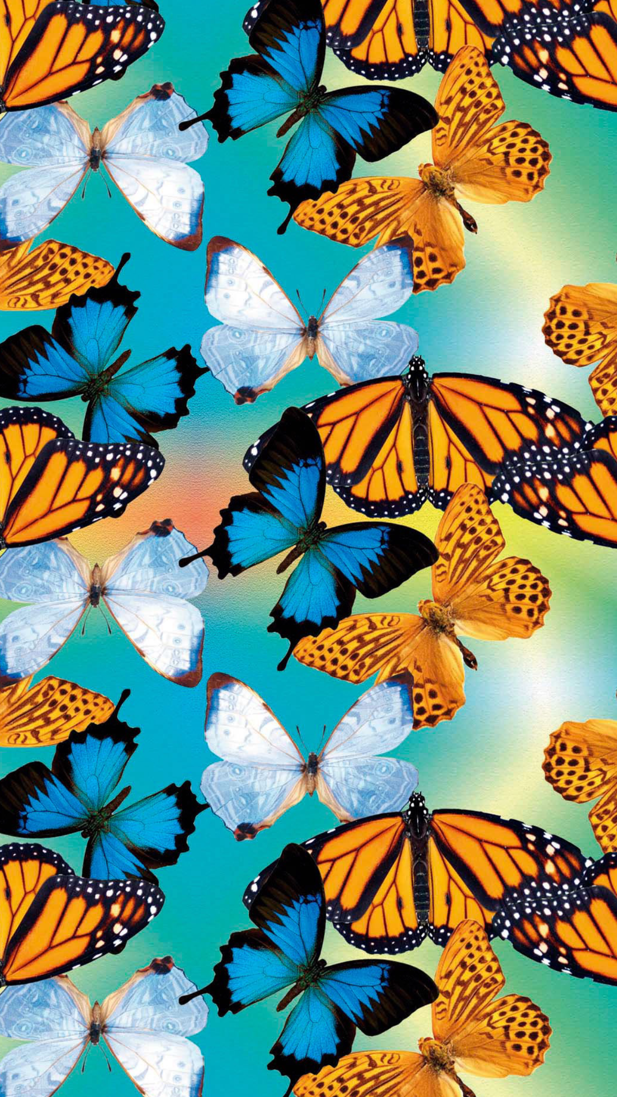 Butterfly VSCO Wallpapers - Wallpaper Cave
