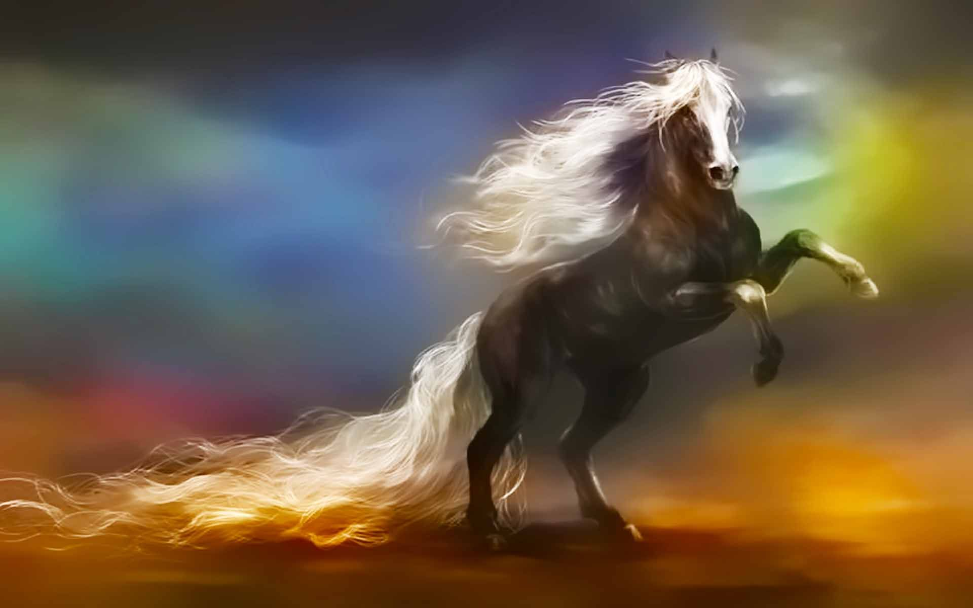 Long Horse Wallpapers Wallpaper Cave
