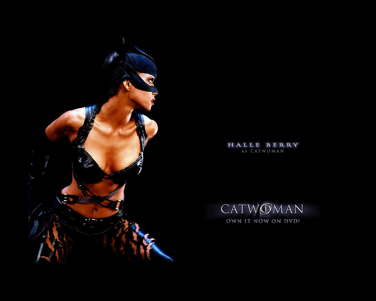 Catwoman Movie Wallpapers - Wallpaper Cave