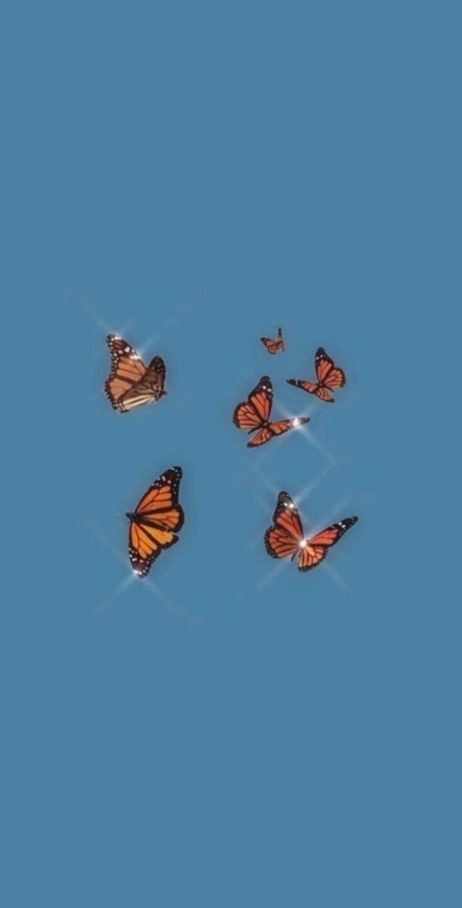 Butterfly Aesthetics Wallpapers Wallpaper Cave
