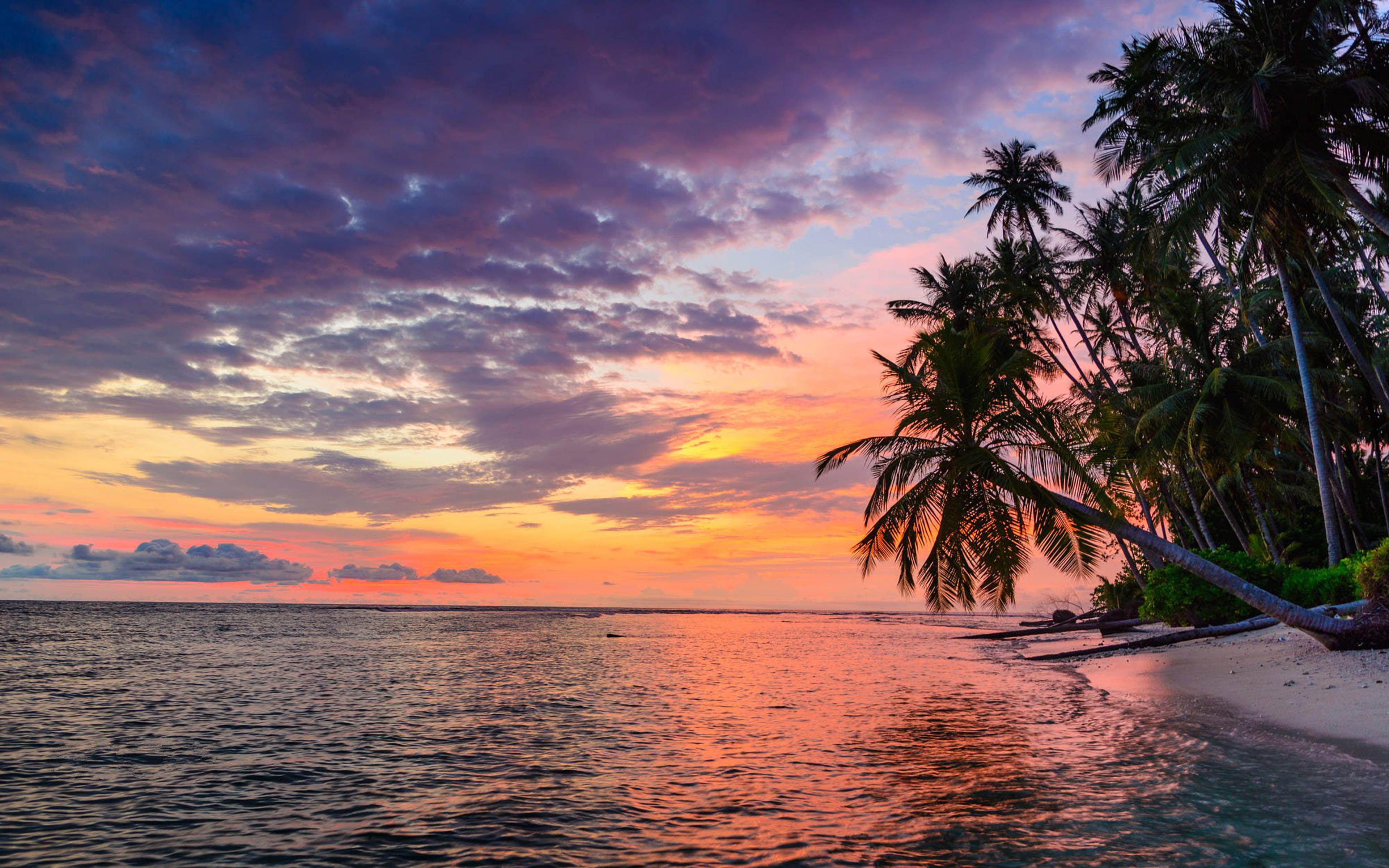 Landscape Coast Sunset 4k HD Wallpapers - Wallpaper Cave
