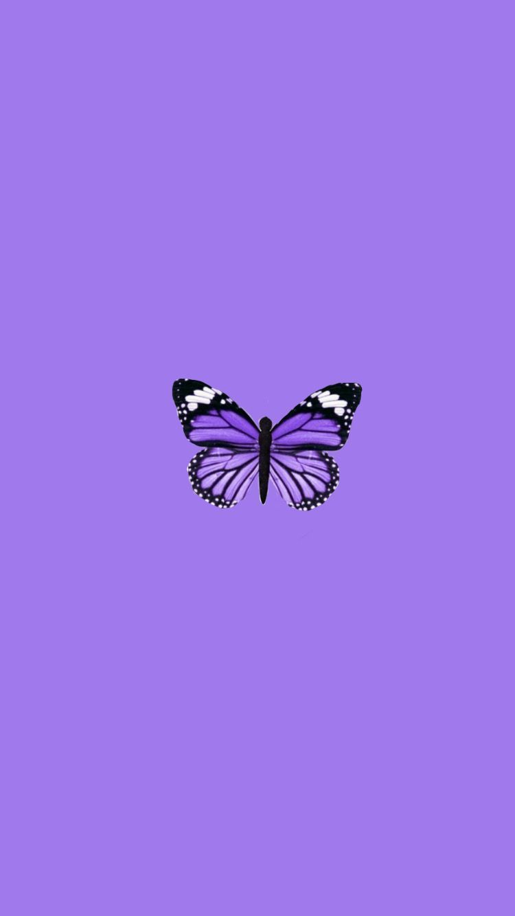 Purple Aesthetic Butterflies Wallpapers Wallpaper Cave