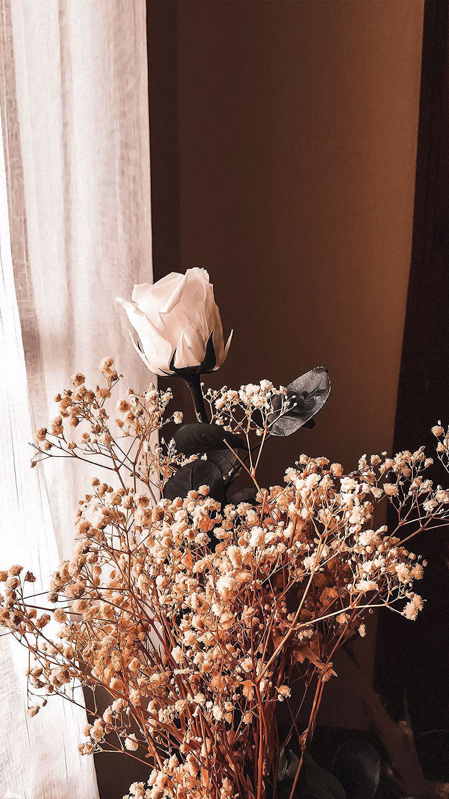 aesthetic brown hd wallpapers