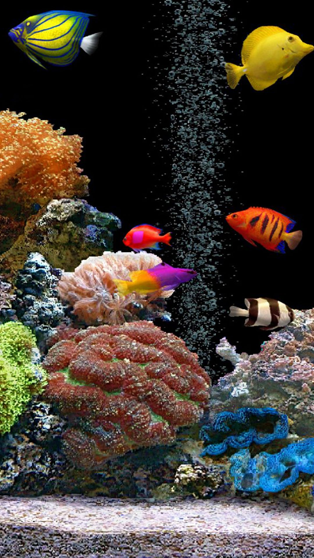 Fish iPhone Wallpapers   Wallpaper Cave