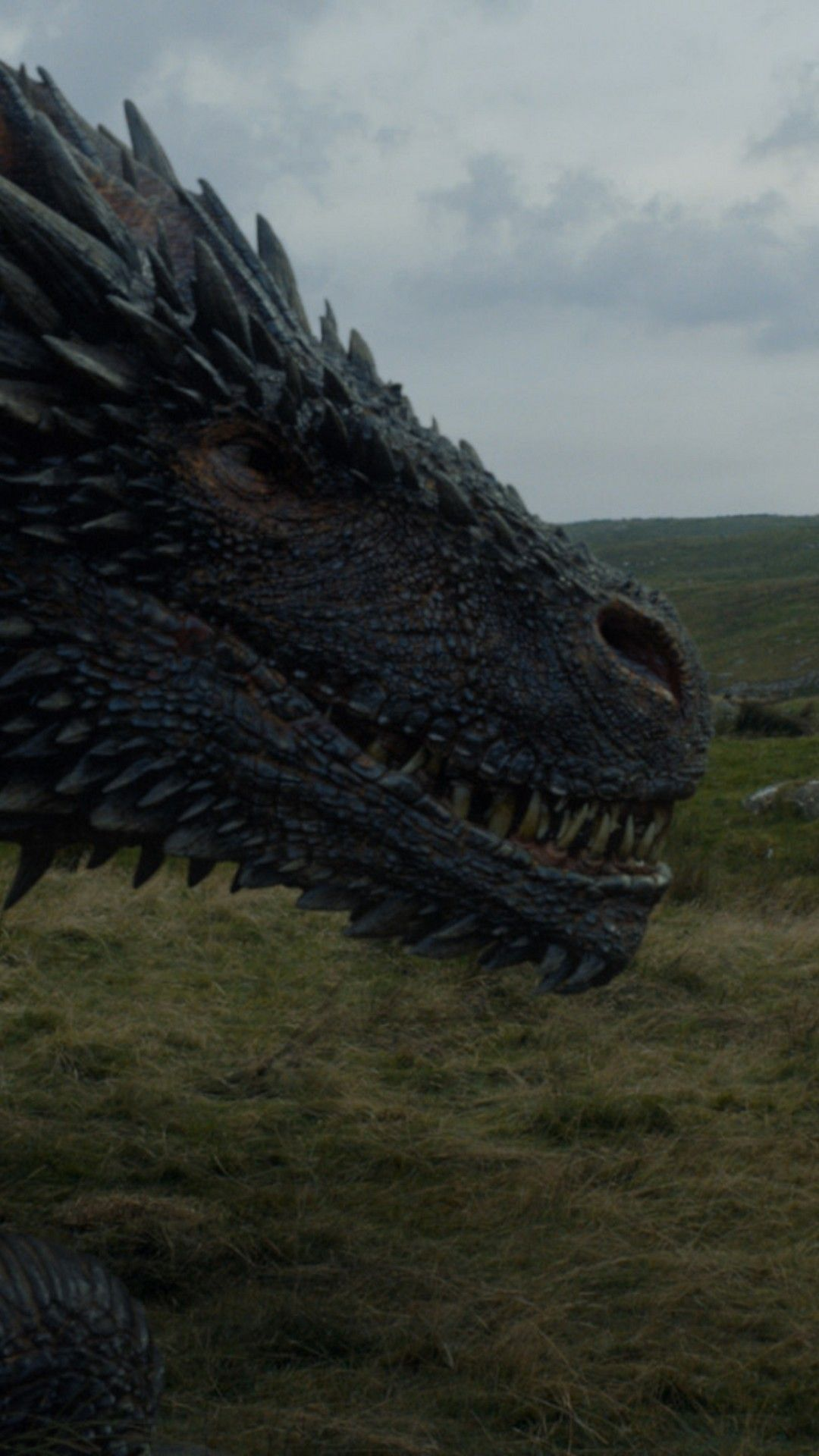 Game Of Thrones Dragons Wallpapers Wallpaper Cave