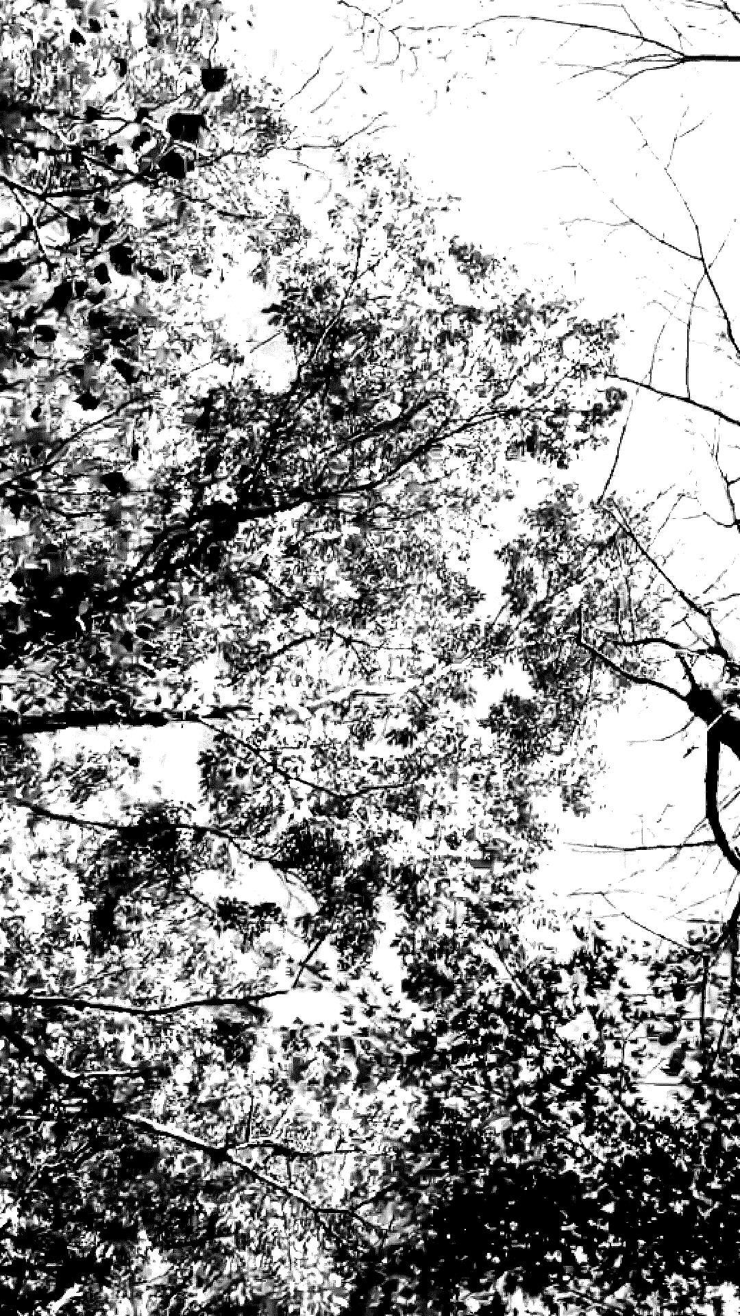 Hitam Putih Wallpapers - Wallpaper Cave
