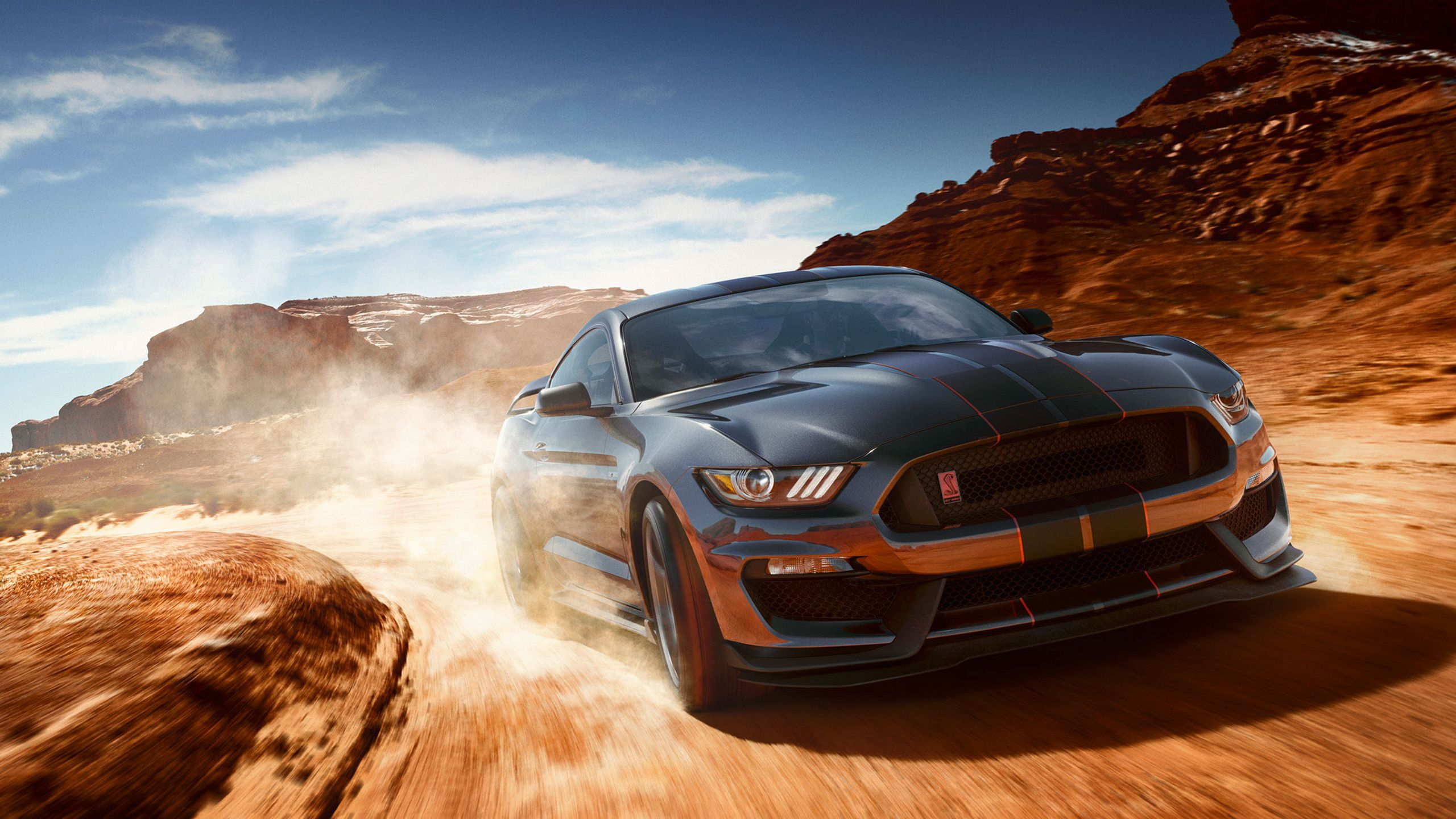 Ford Mustang Shelby Gt350 Hd Wallpapers Wallpaper Cave