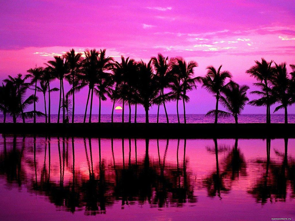 Purple Beach Sunset Wallpapers Wallpaper Cave