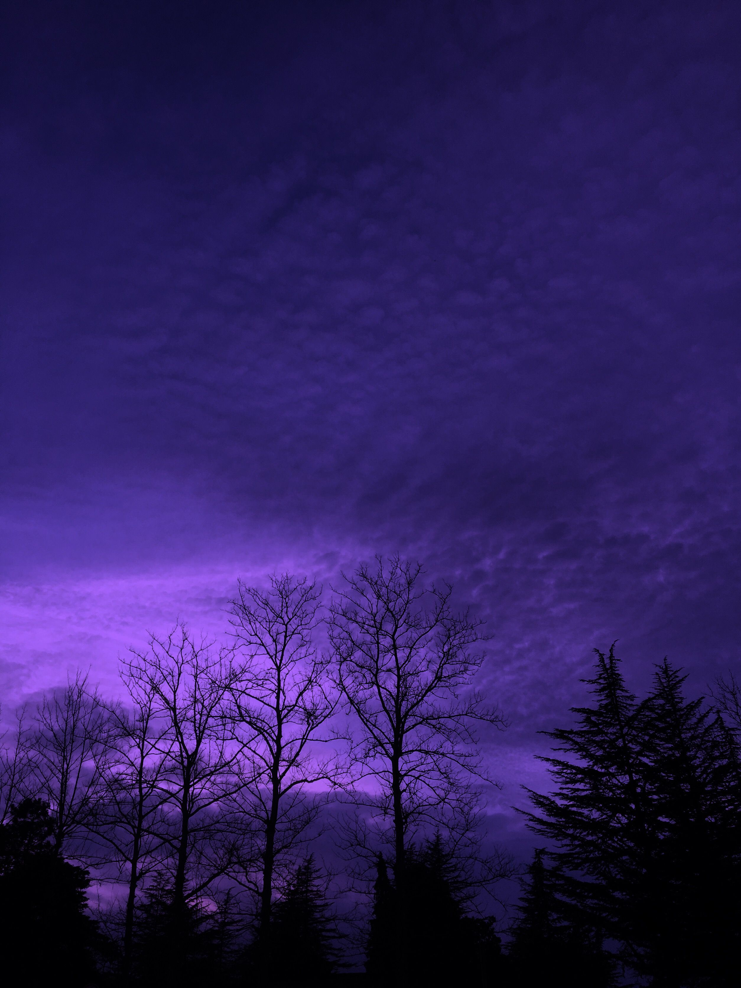 purple aesthetic landscape wallpapers