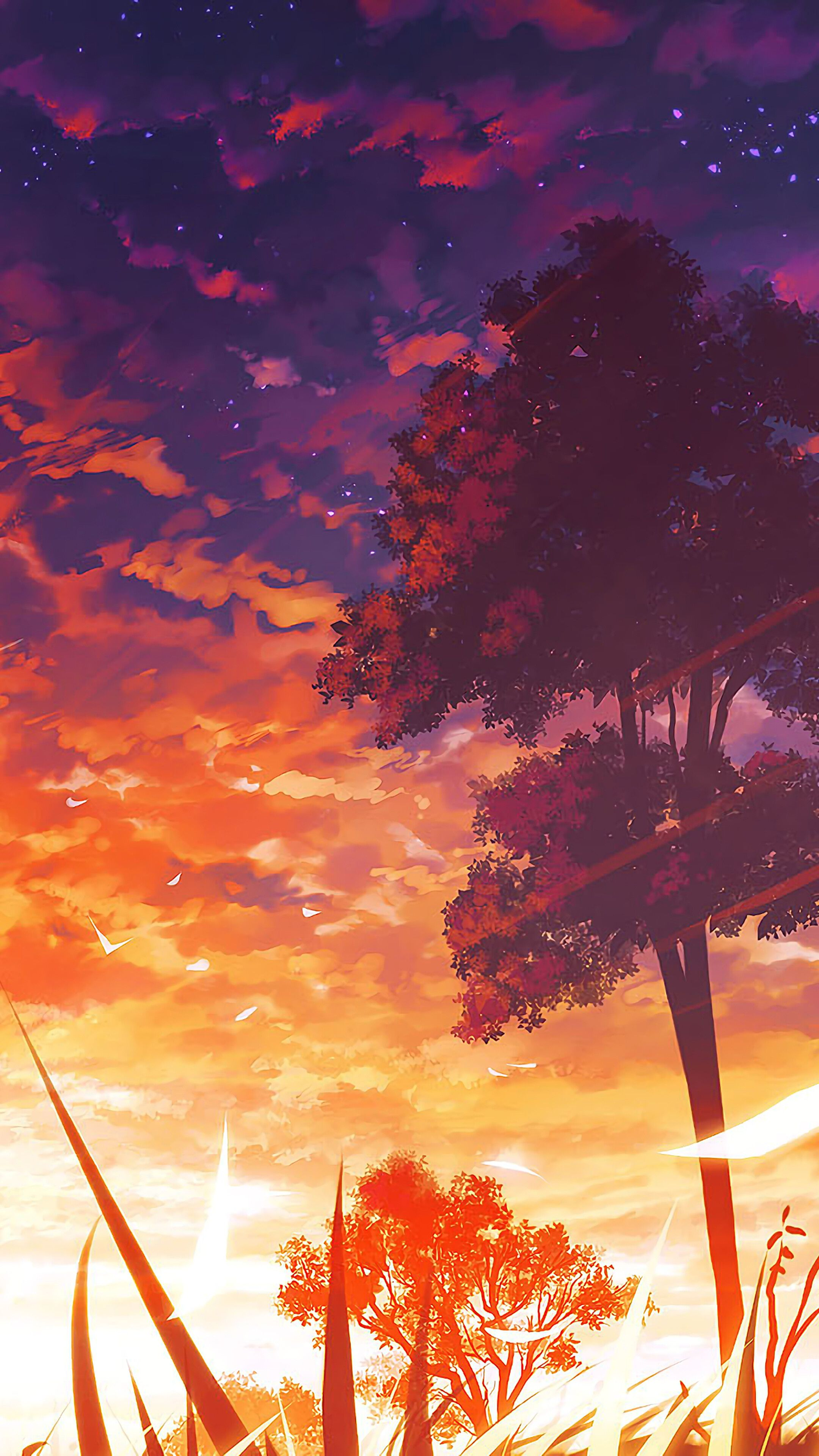 Anime Sunset And Trees Wallpapers - Wallpaper Cave