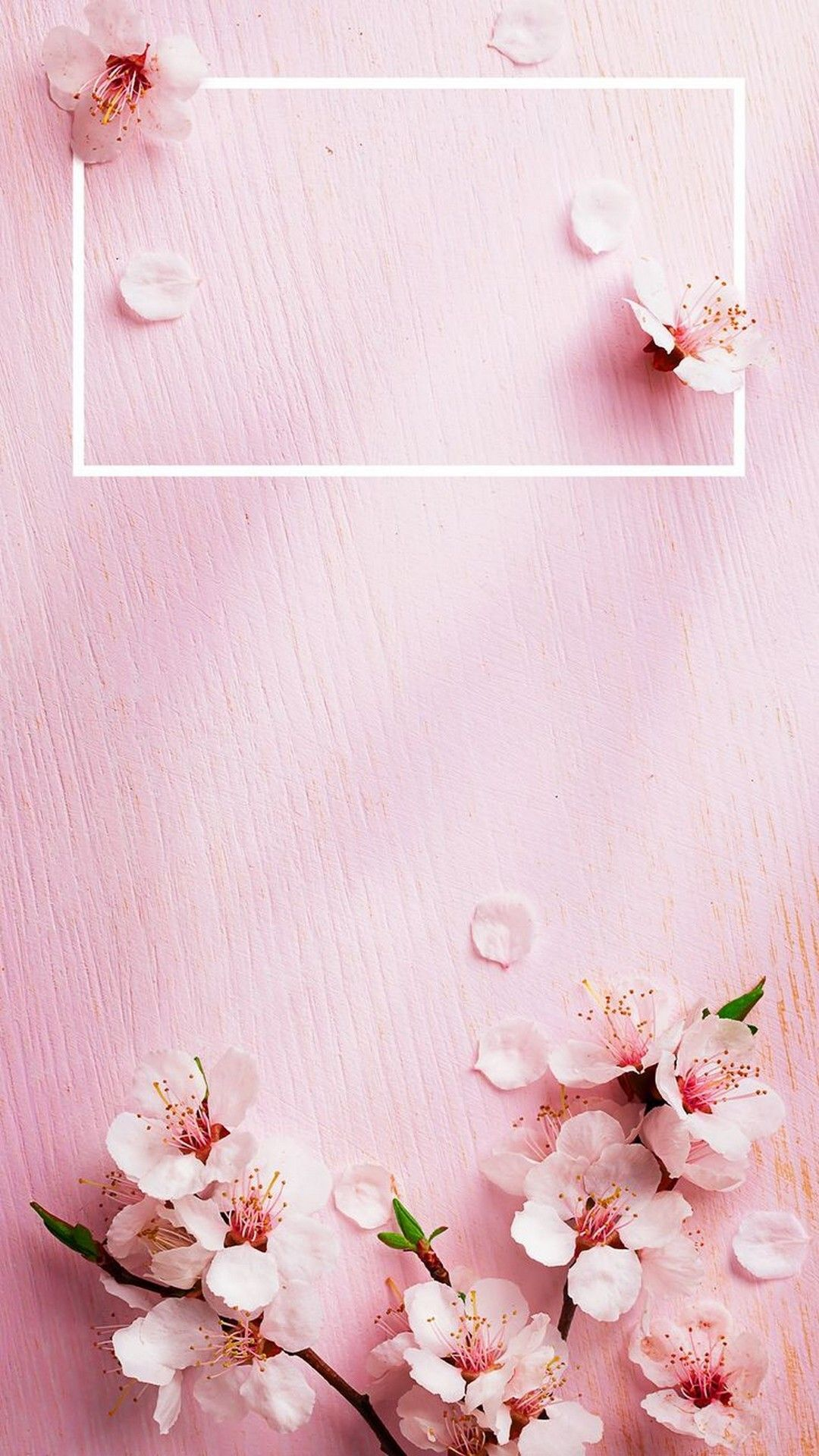 Aesthetic Spring 3d Flower Iphone Wallpapers Wallpaper Cave