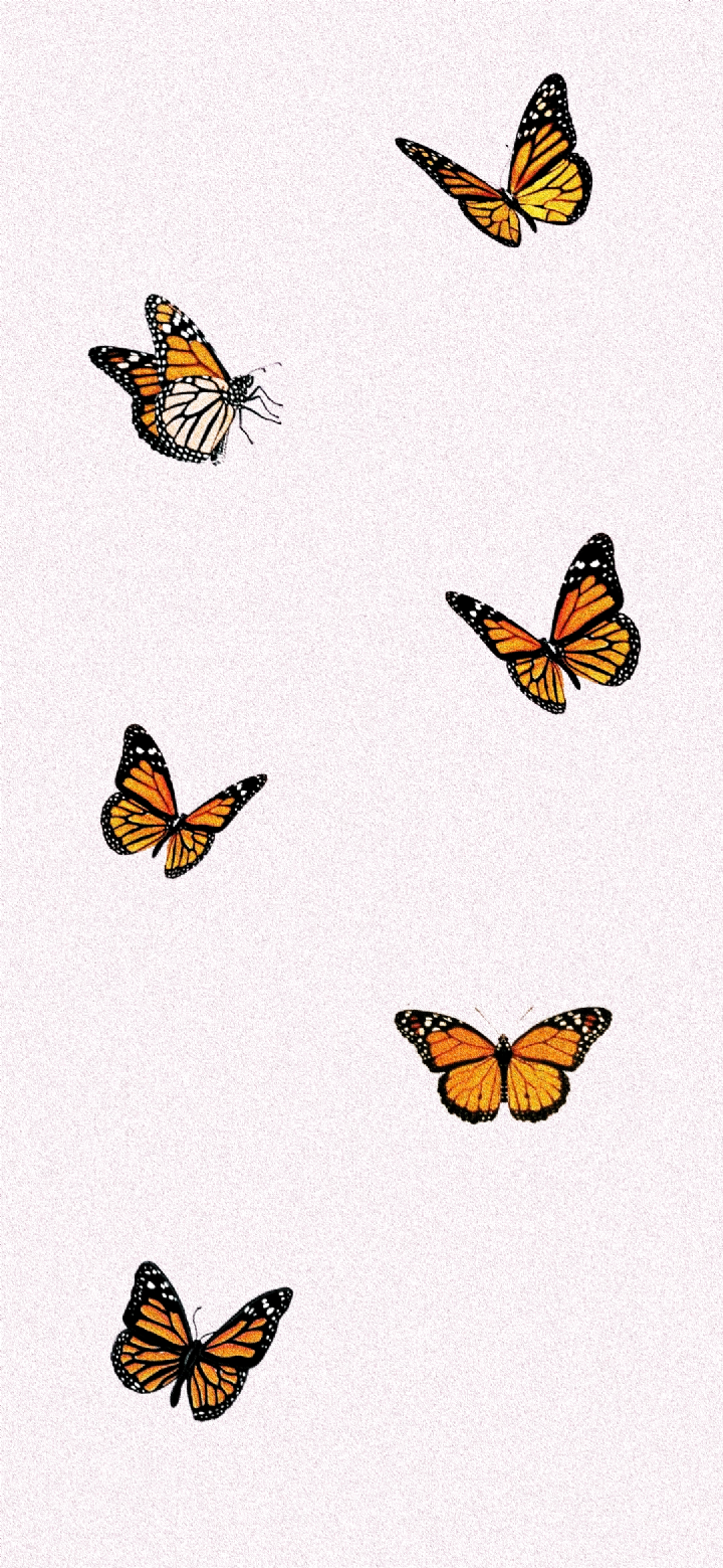 Butterfly Iphone Wallpapers Wallpaper Cave