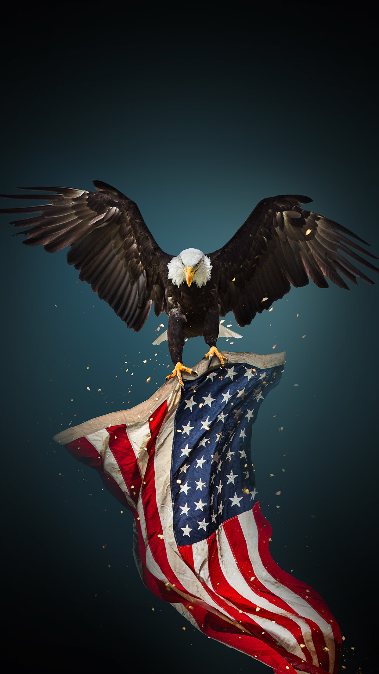 American Eagle iPhone Wallpapers - Wallpaper Cave