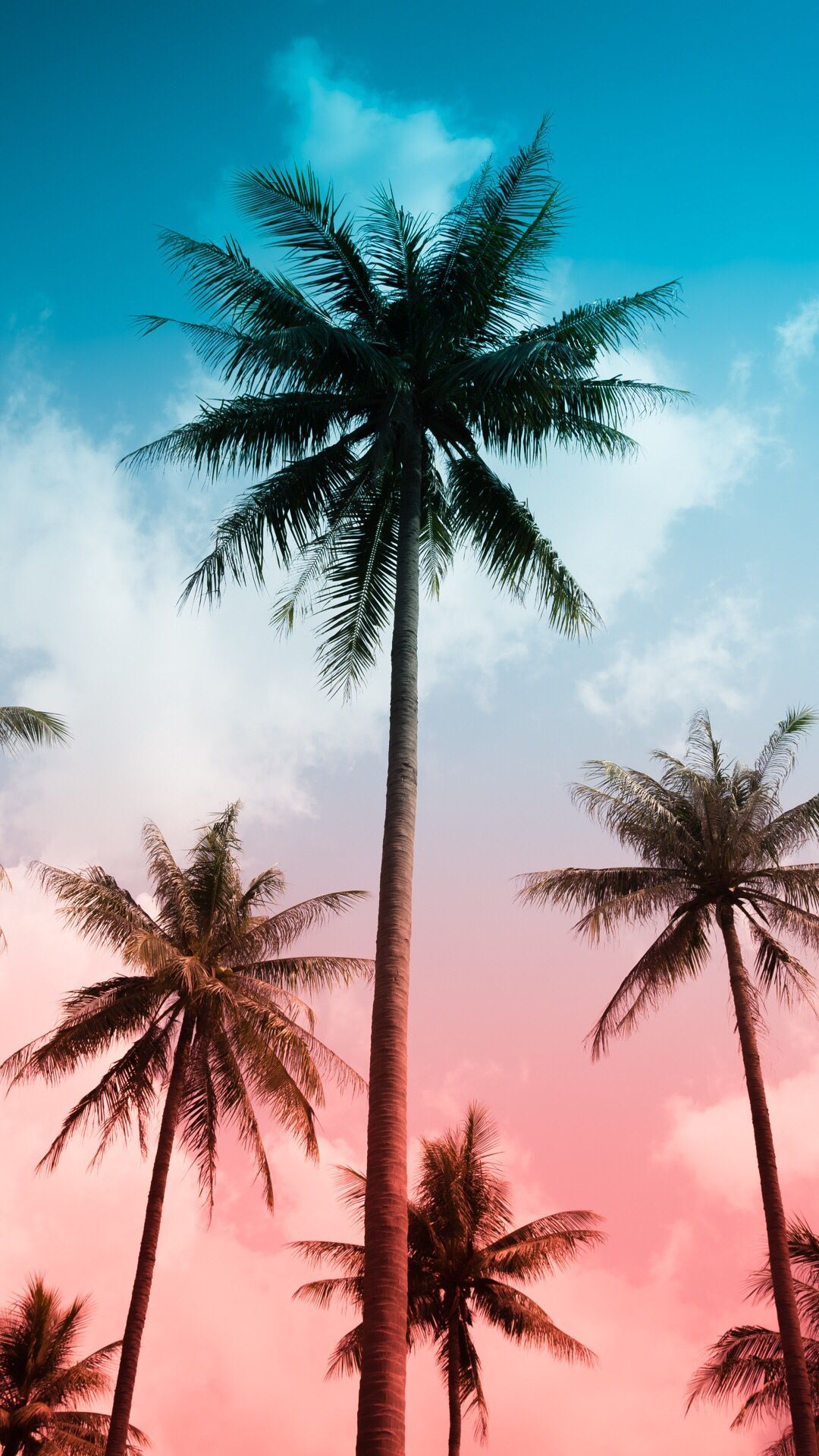 Summer Vibes iPhone Wallpapers   Wallpaper Cave