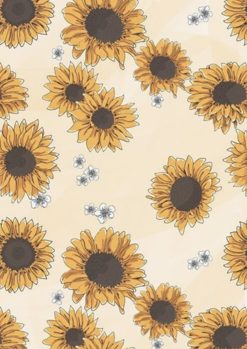 Aesthetic Flower Illustration Wallpapers Wallpaper Cave