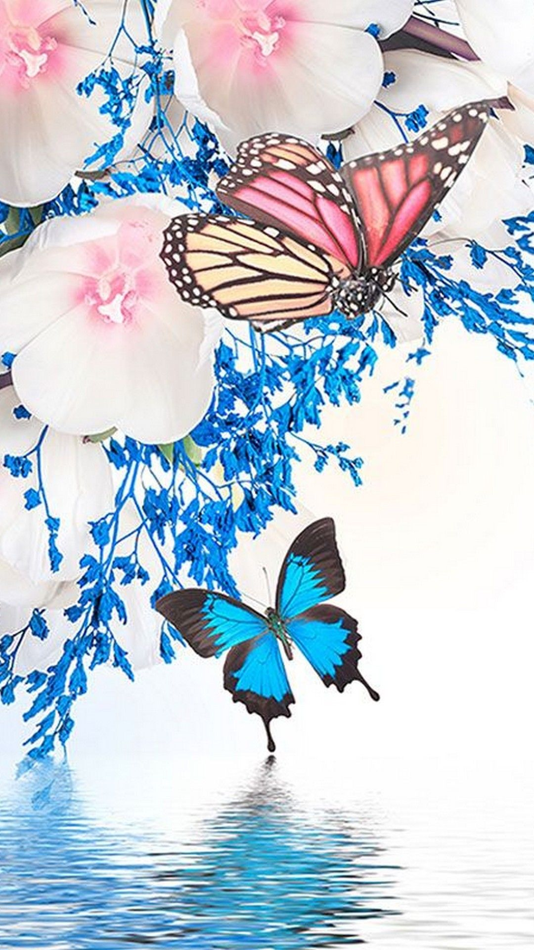 Butterfly HD Android Mobile Wallpapers - Wallpaper Cave