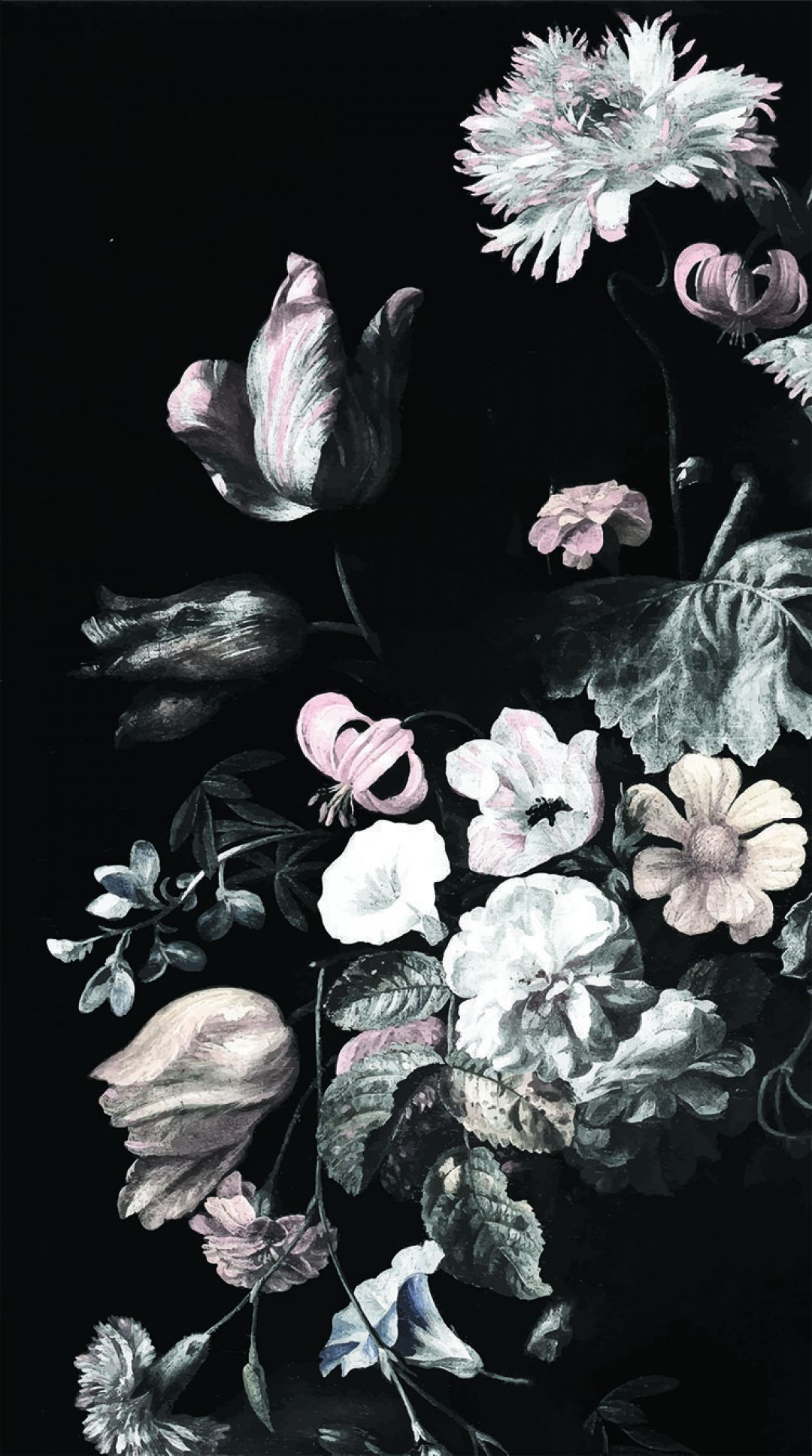 White Flower Aesthetic Wallpapers Wallpaper Cave