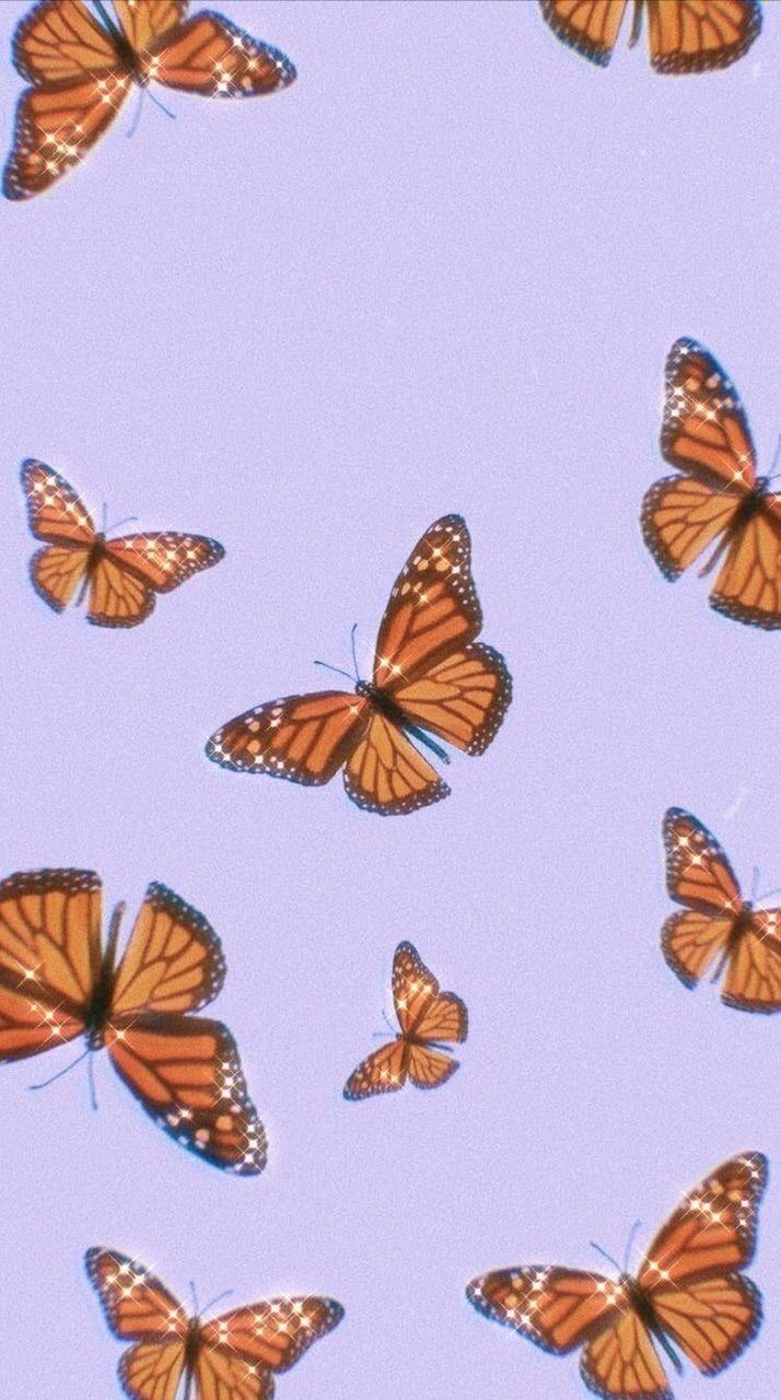 Cute Aesthetic Butterflies Wallpapers - Wallpaper Cave