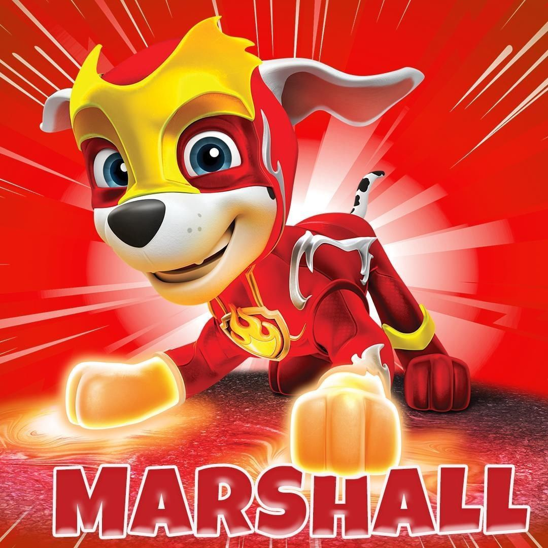 paw patrol marshall wallpapers  wallpaper cave