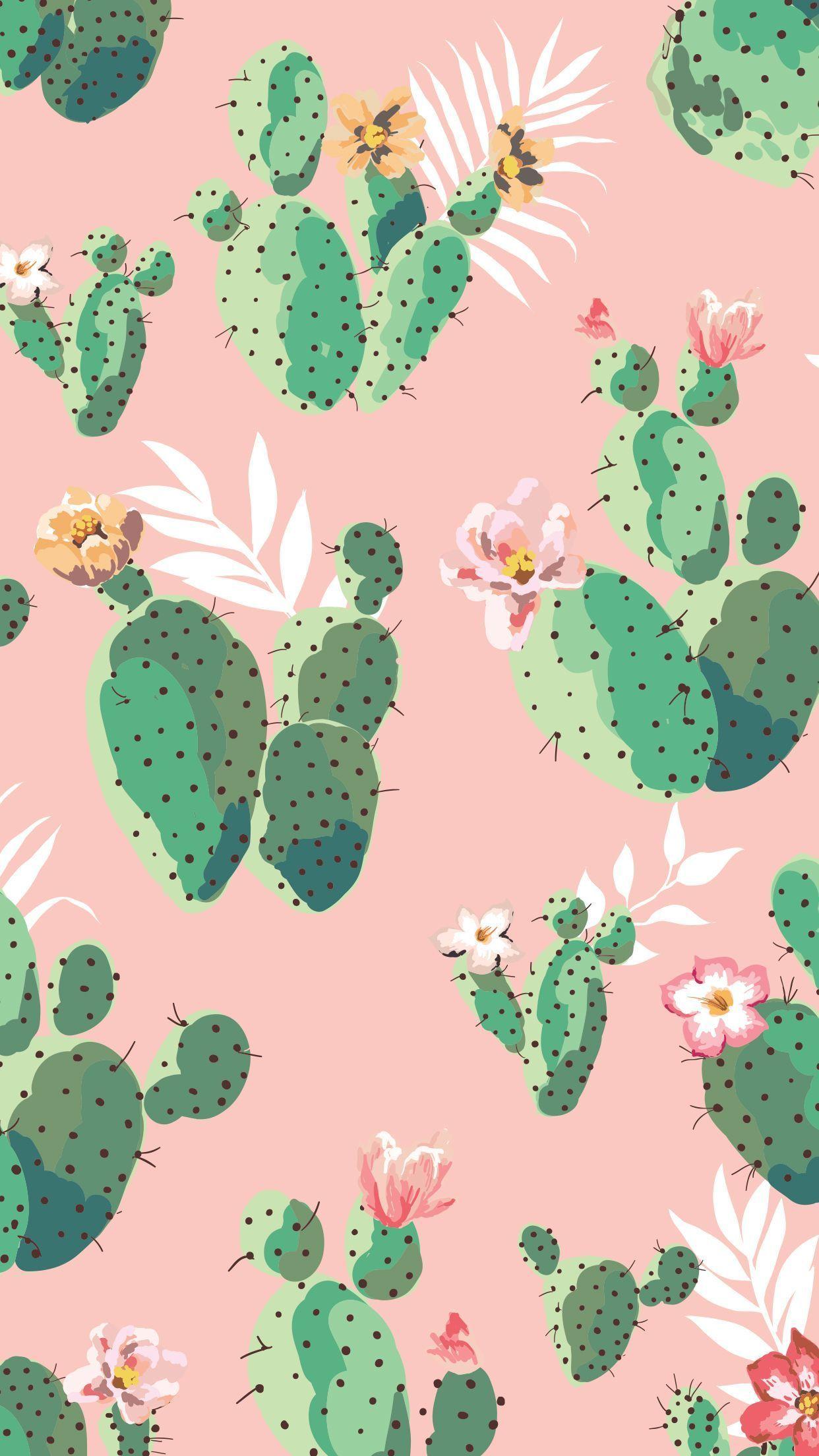 Cute Aesthetic Cactus Wallpapers Wallpaper Cave