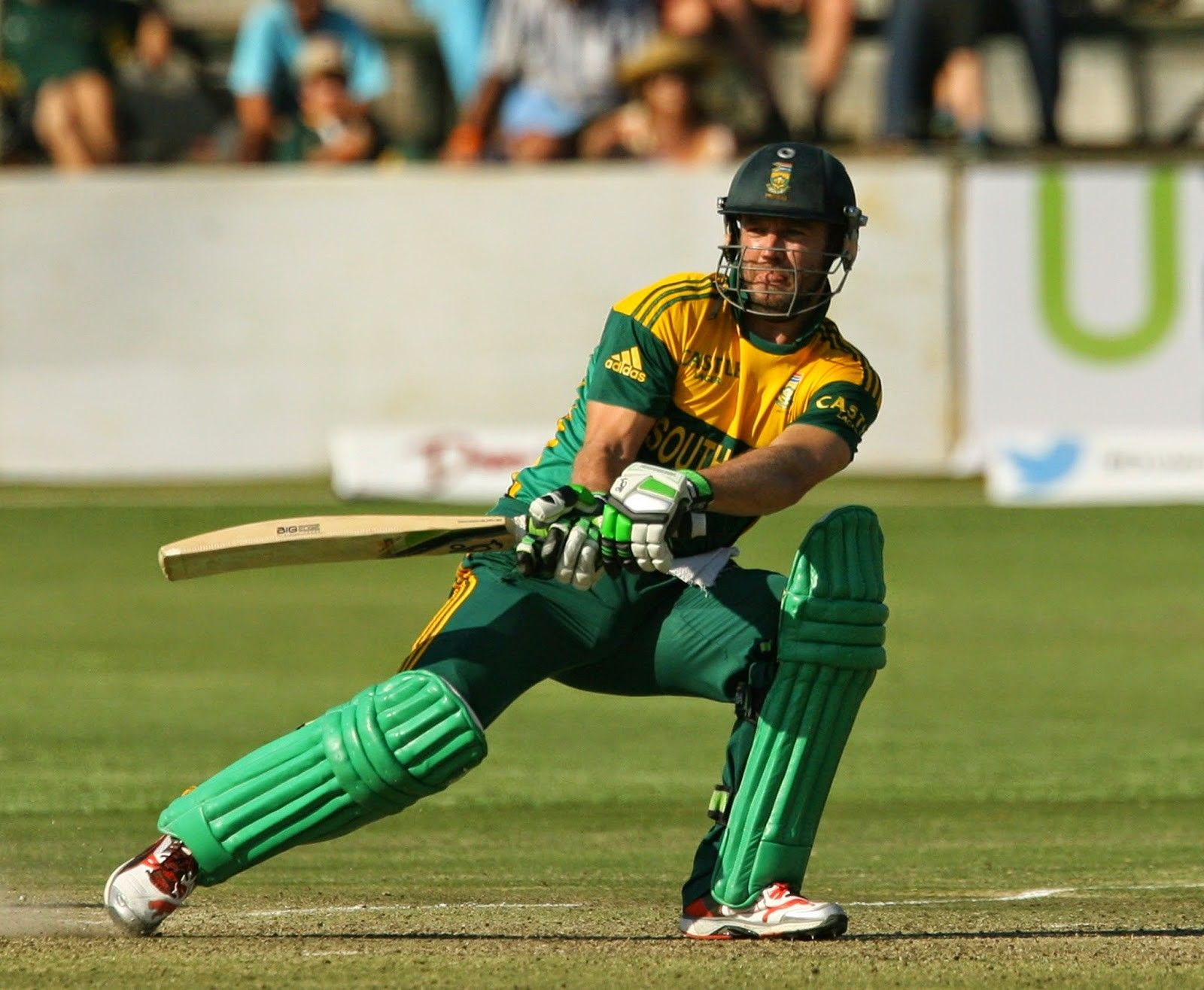 South Africa Cricket Team Background 7