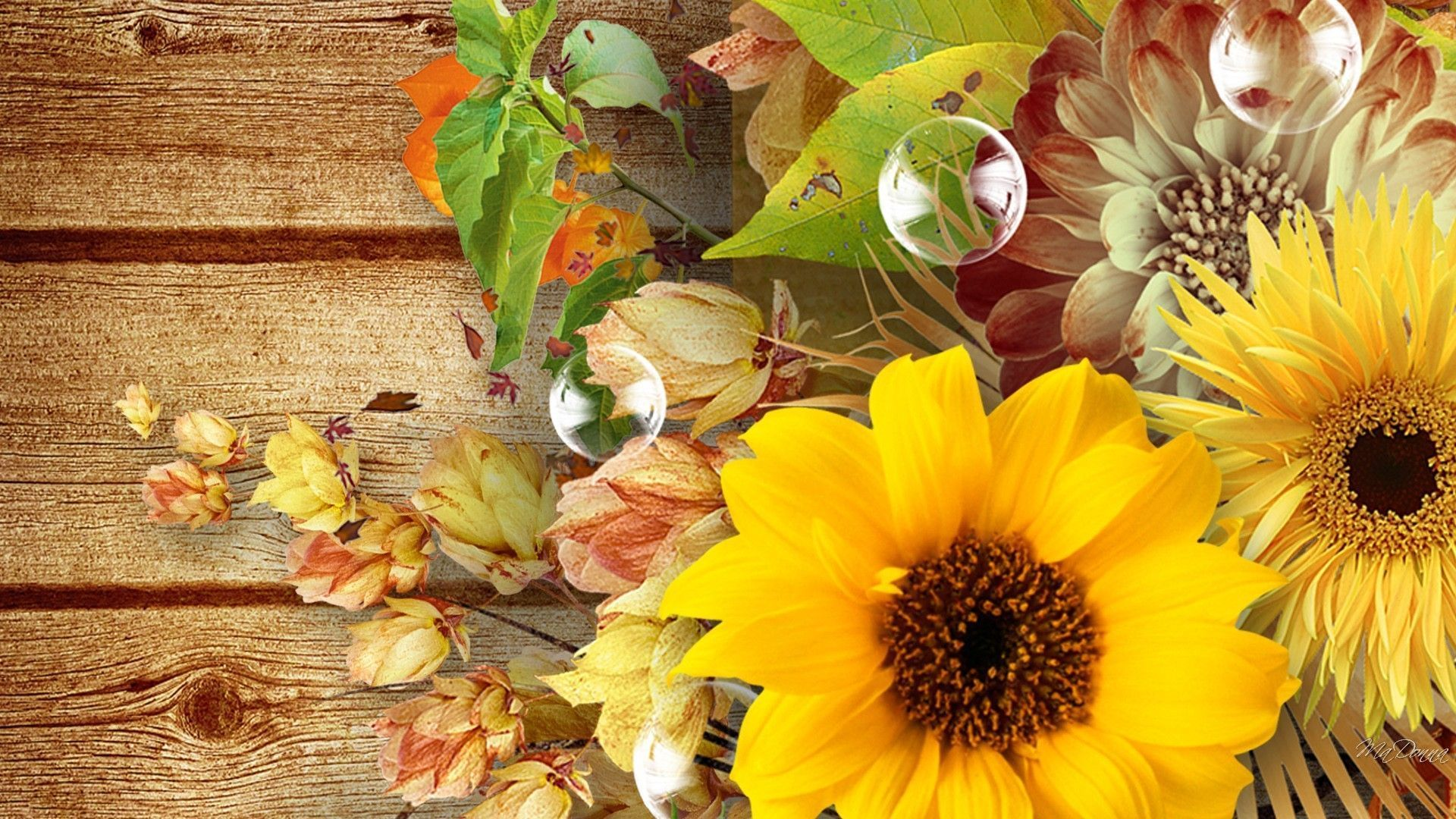 Autumn With Sunflowers Wallpapers - Wallpaper Cave