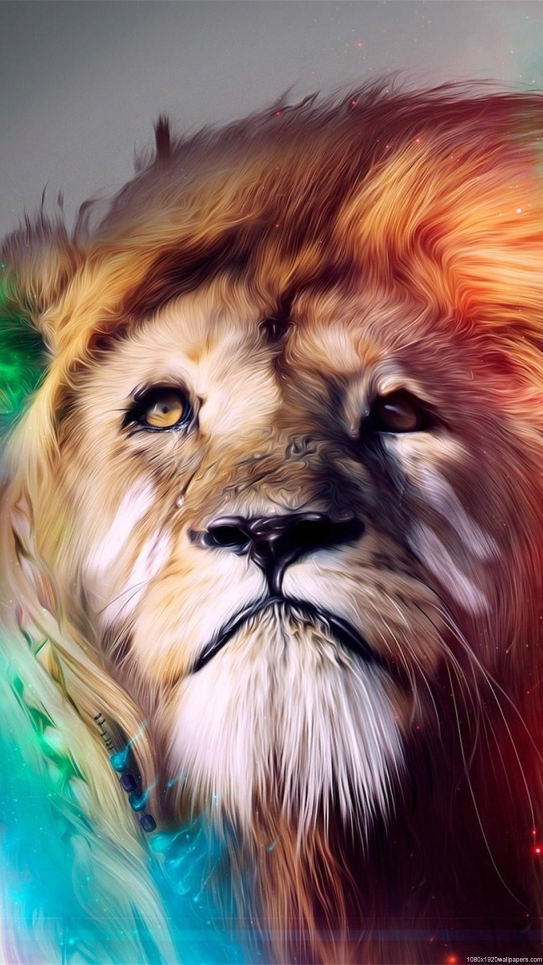Cool Lions Wallpapers Wallpaper Cave