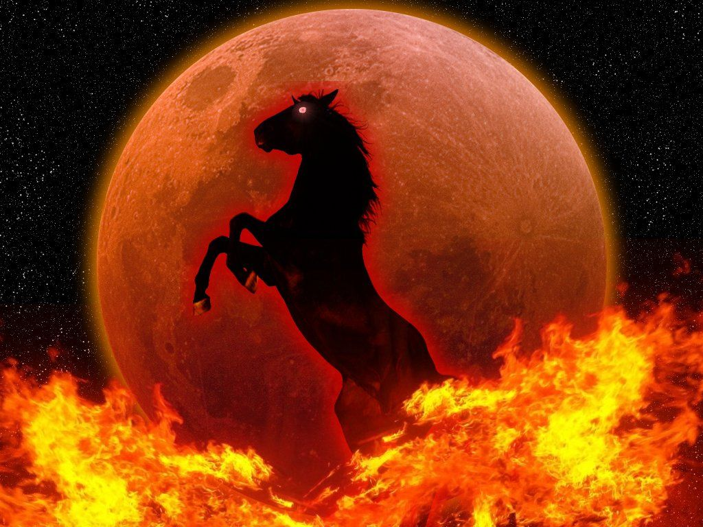 Red Horse Wallpapers Wallpaper Cave