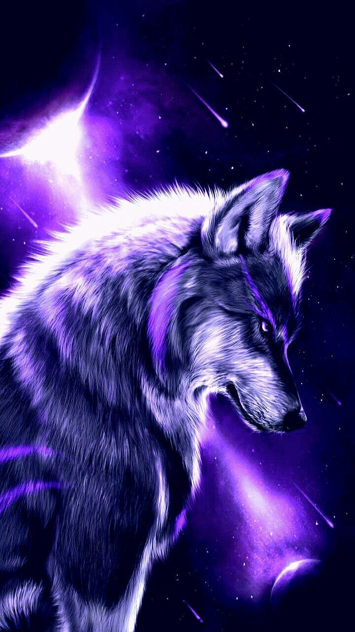Rainbow Fire Wolf Wallpapers