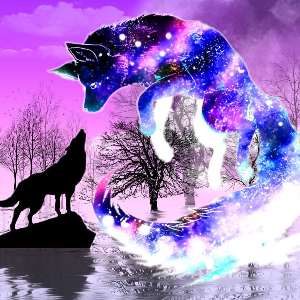 Galaxy Wolf Rainbow Wallpapers Wallpaper Cave