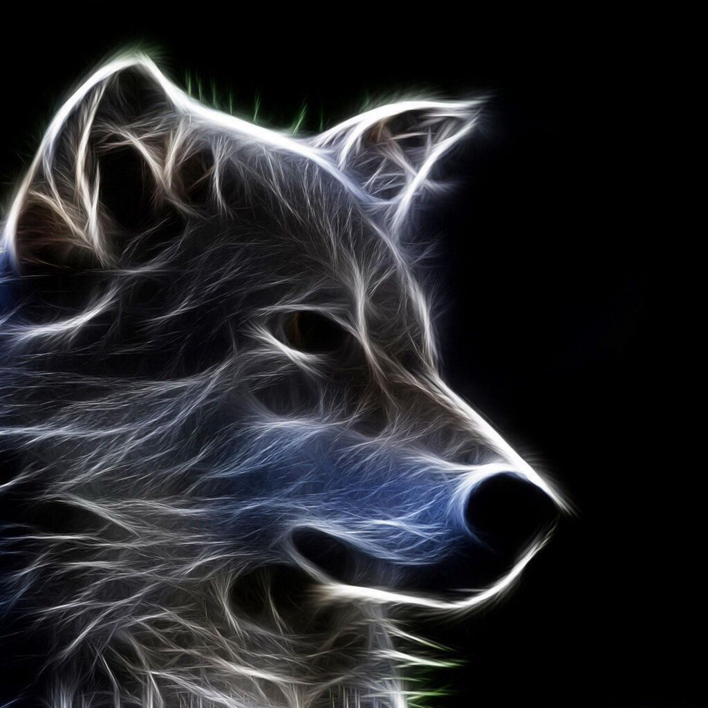 Ghost Wolf Wallpapers Wallpaper Cave