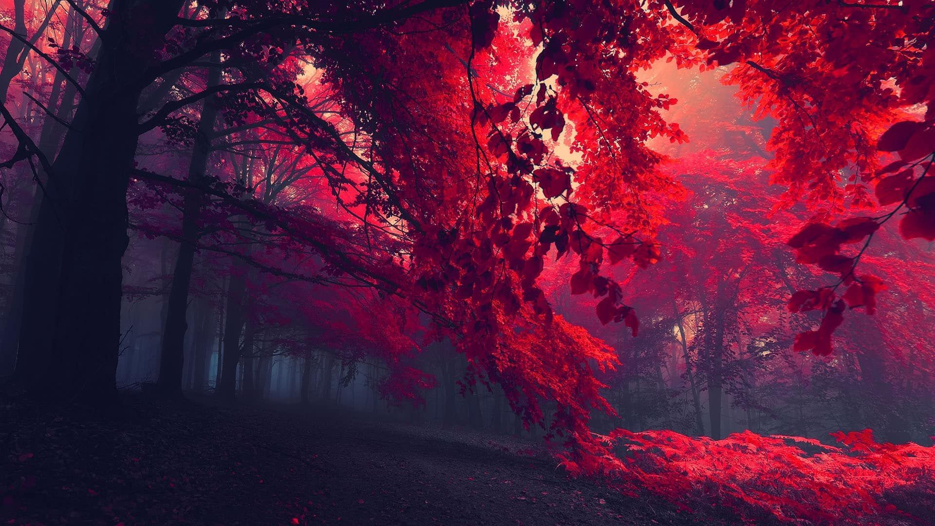 Dark Vintage Autumn Wallpapers Wallpaper Cave