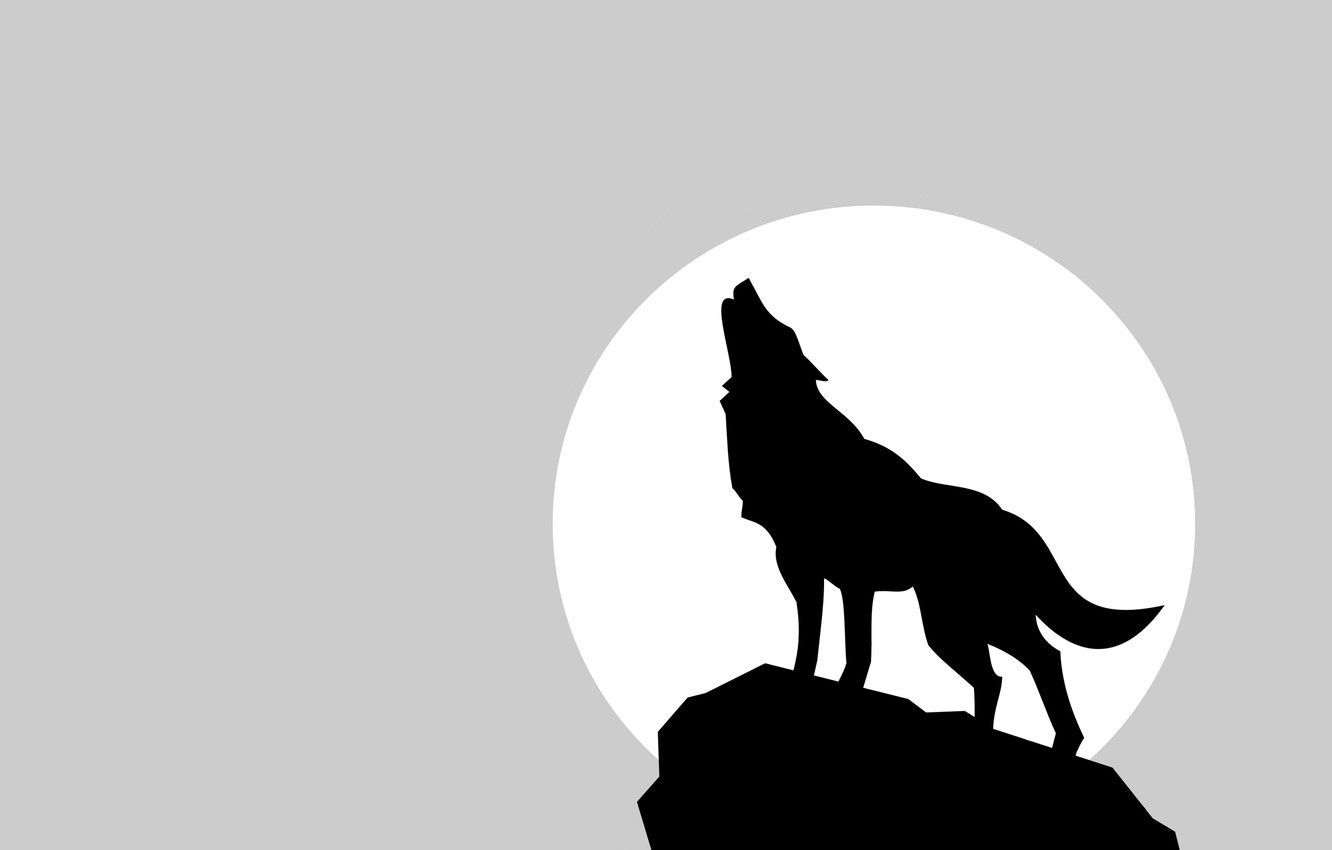 Wallpapers the moon, wolf, shadow, minimalism, moon, wolf image for desktop, section минимализм