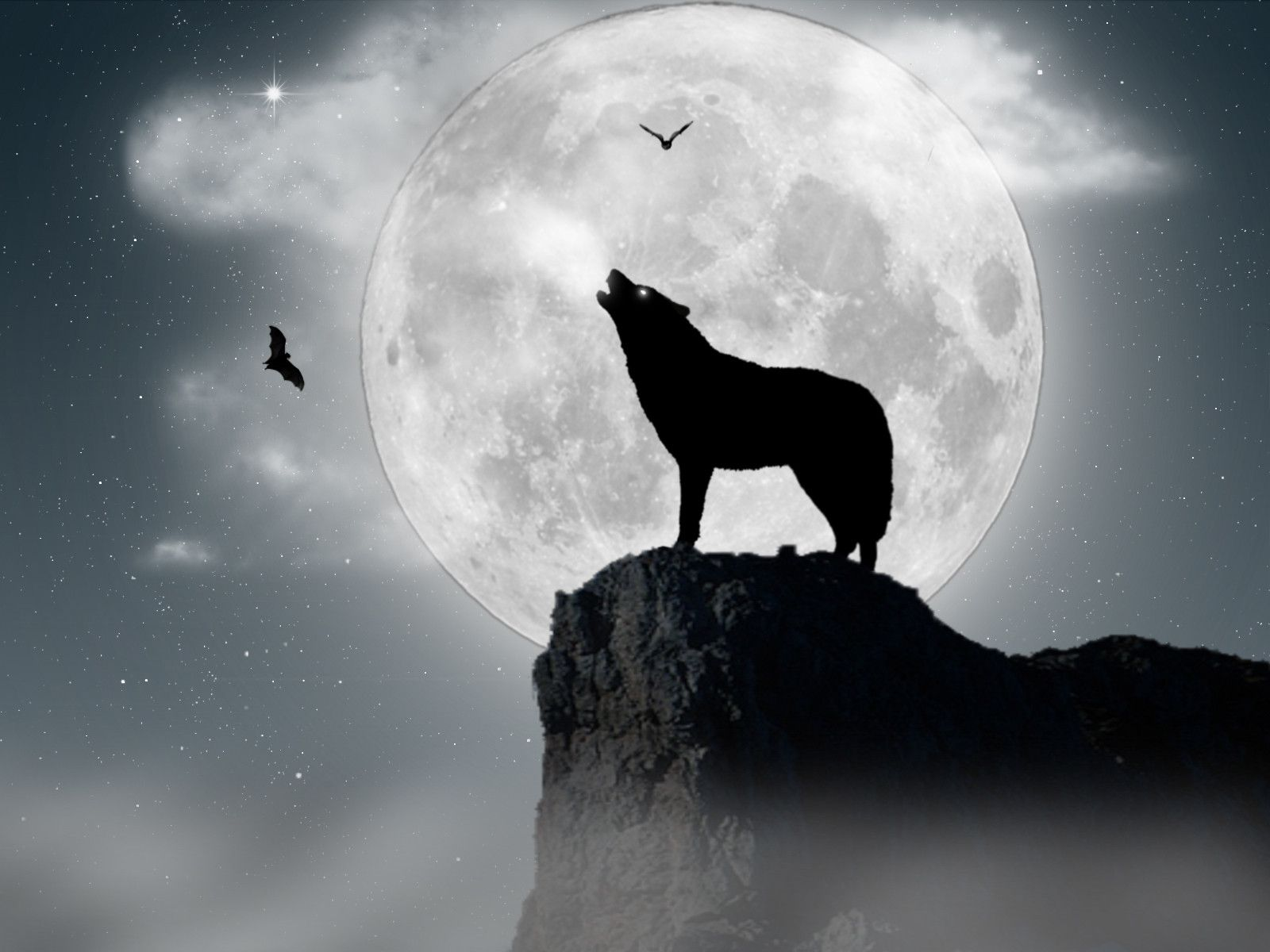 Wolf Howling Minimalist Wallpapers posted by Ethan Johnson