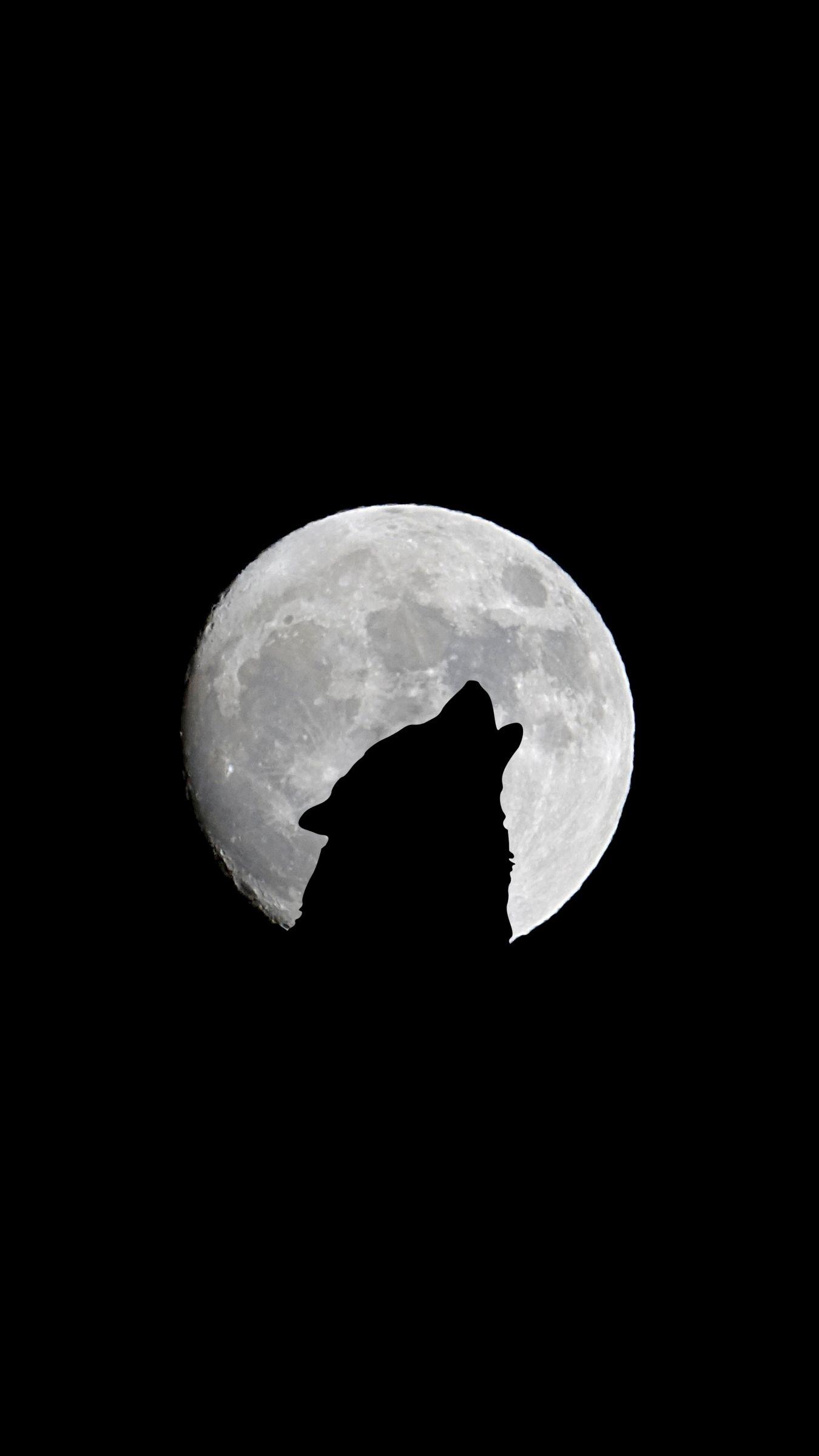 Iphone Wallpapers Moon Wolf