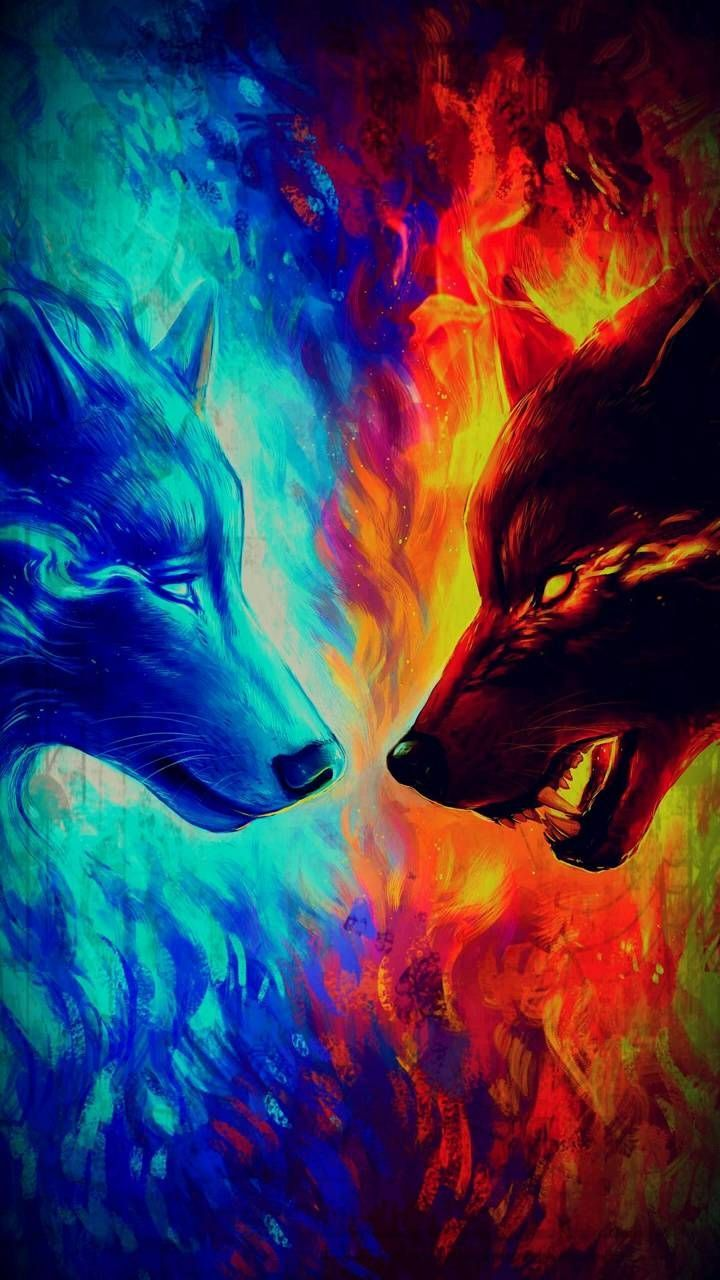 Rainbow Fire Wolf Wallpapers Wallpaper Cave