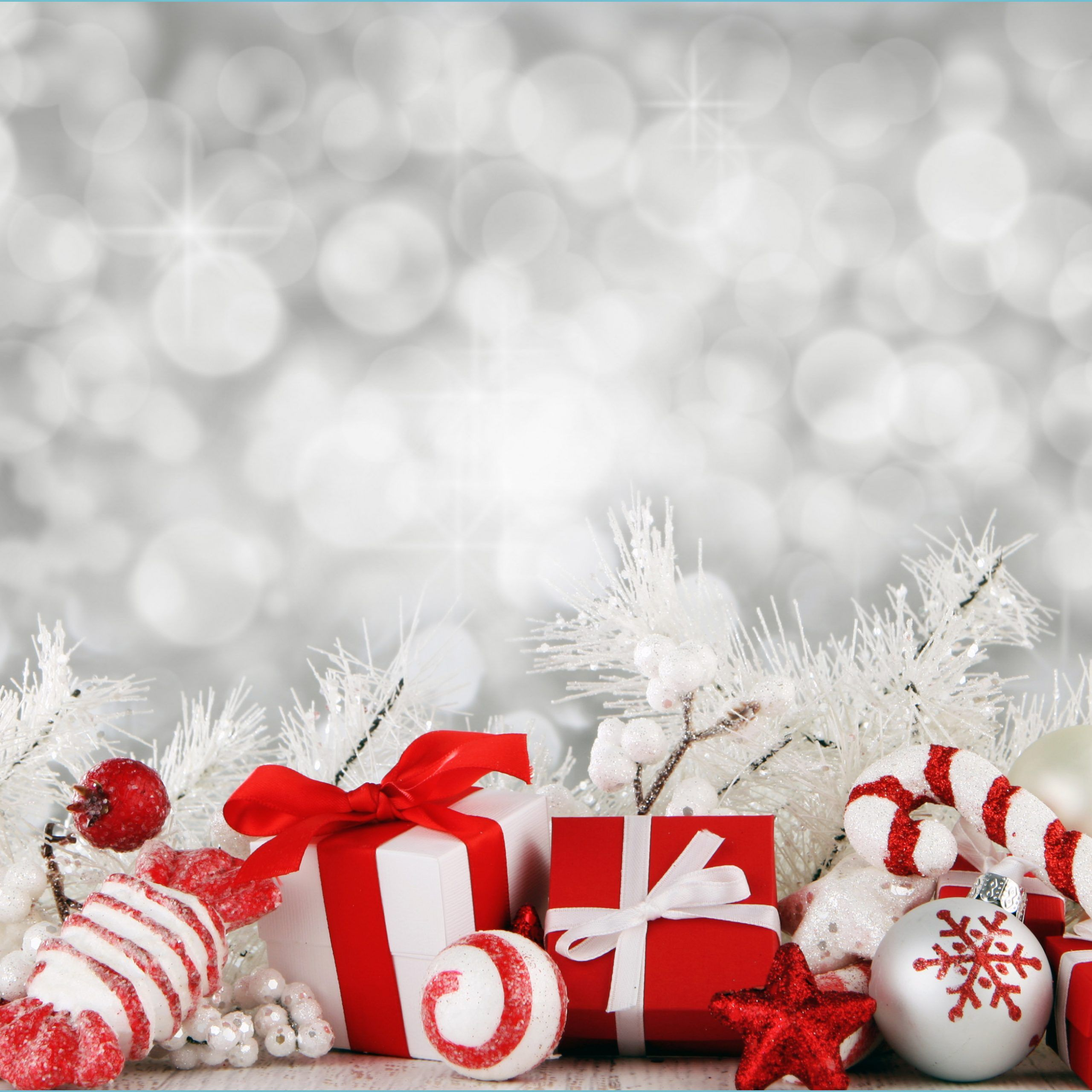 Best 14+ Christmas Backgrounds Photography on HipWallpapers